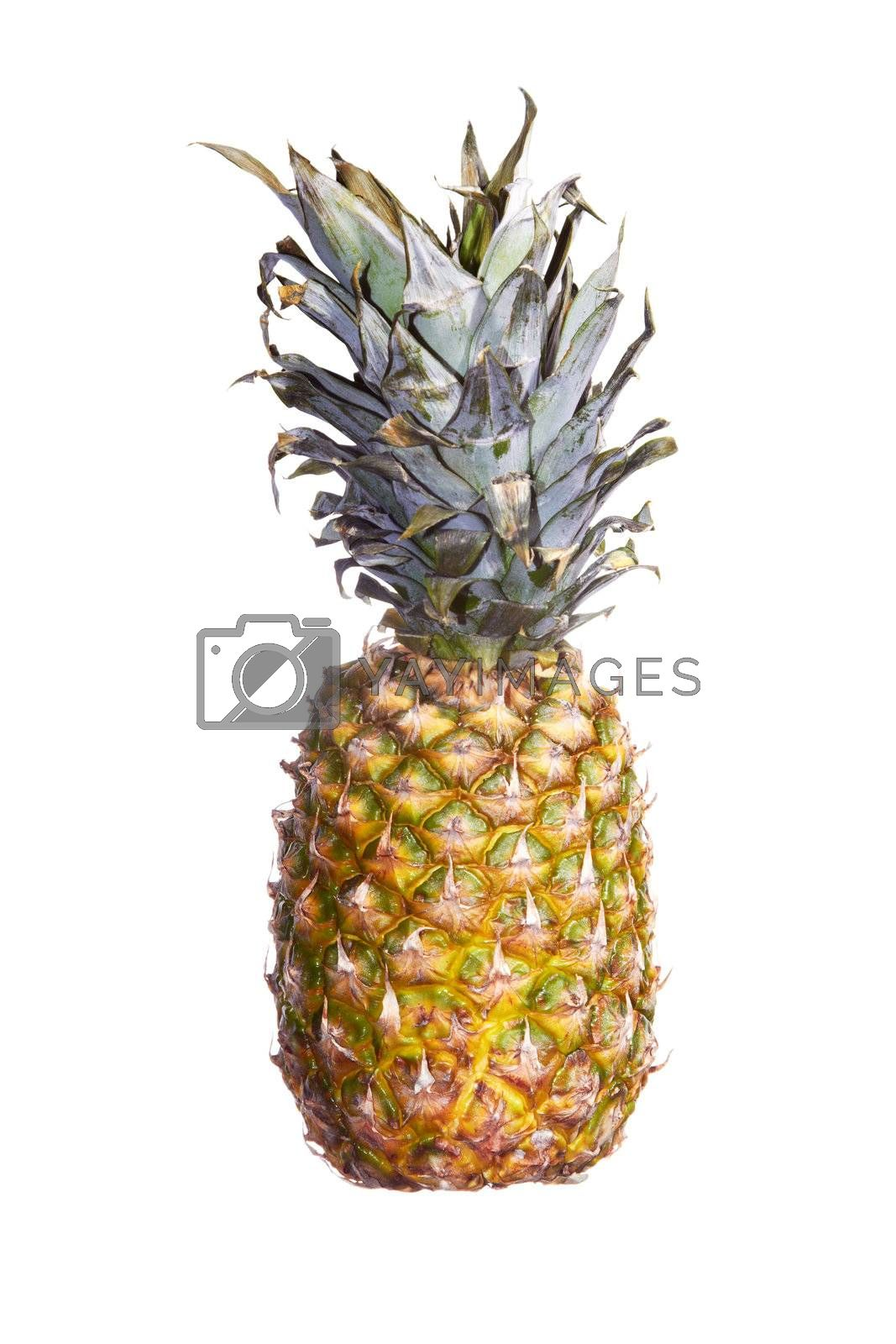 Fresh pineapple on a white background. Color photo