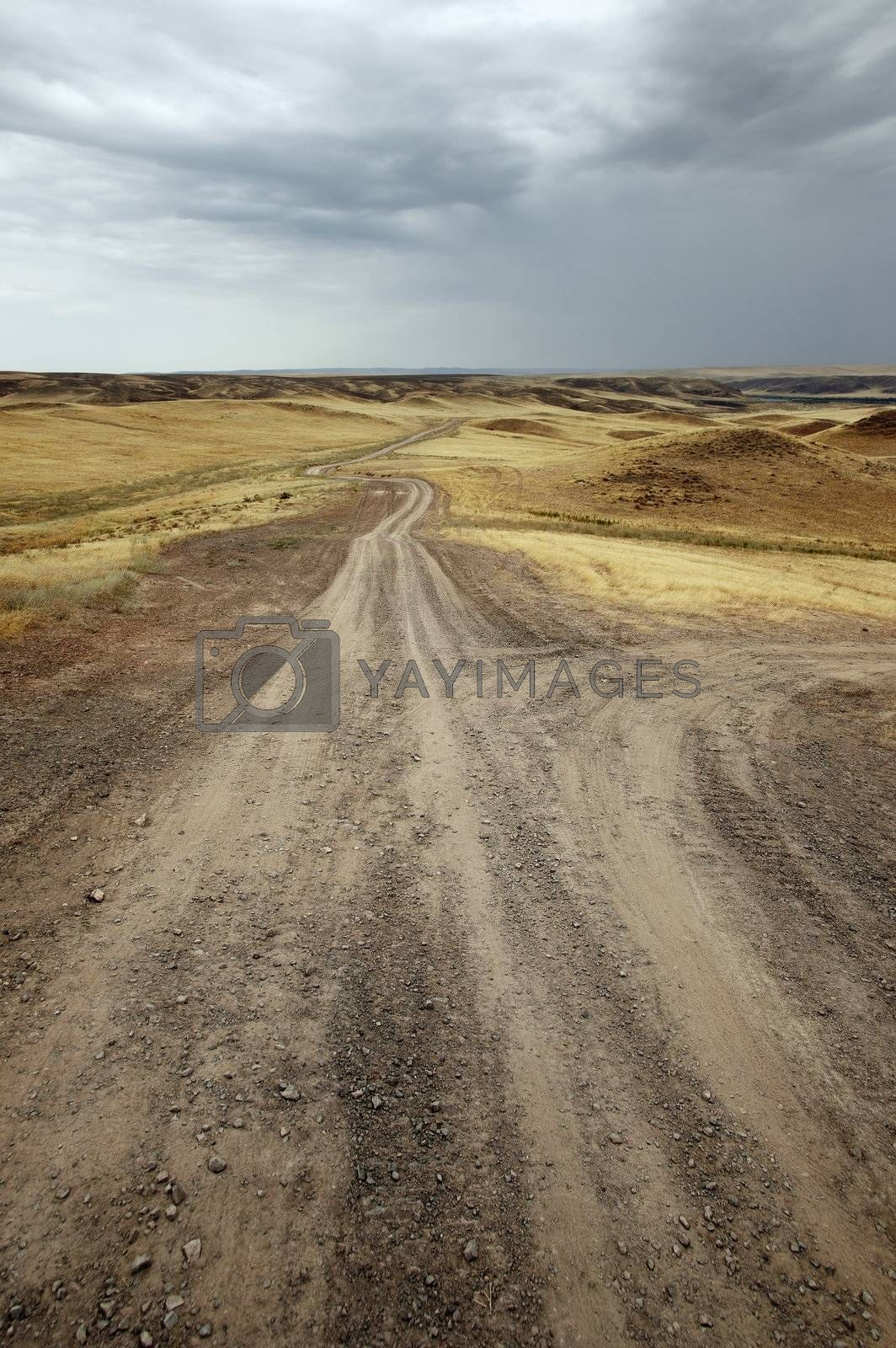 Photo of the country roads under the overcast