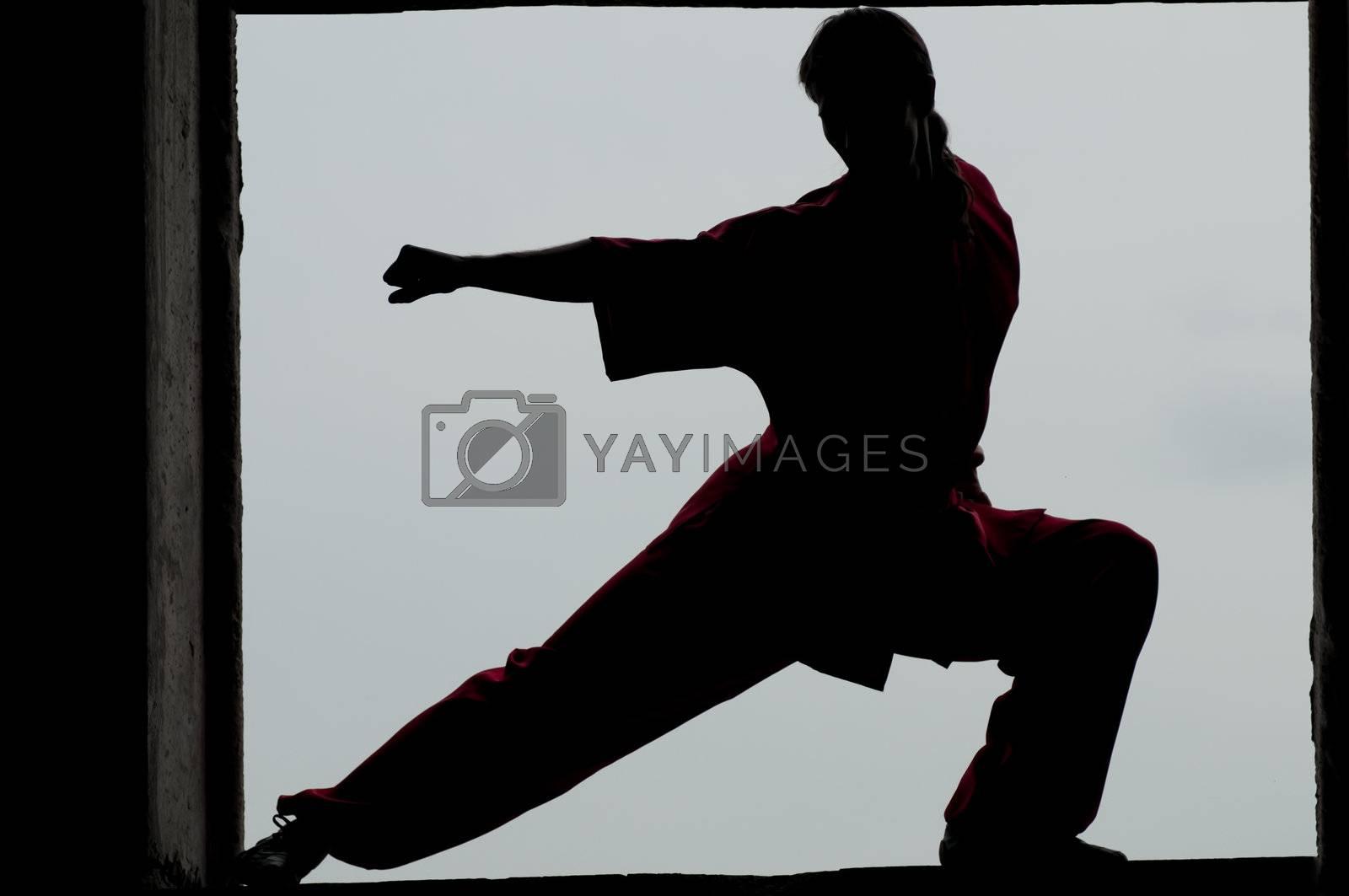 Shaolin warriors wushoo man silhouette practice martial art outdoor. Kung fu