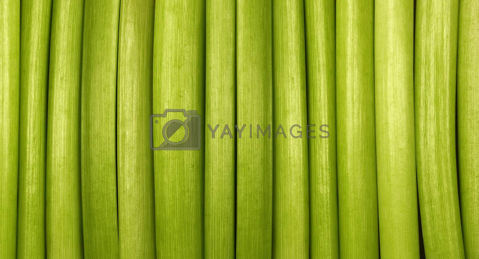 Green background made from organic material - cut flowers