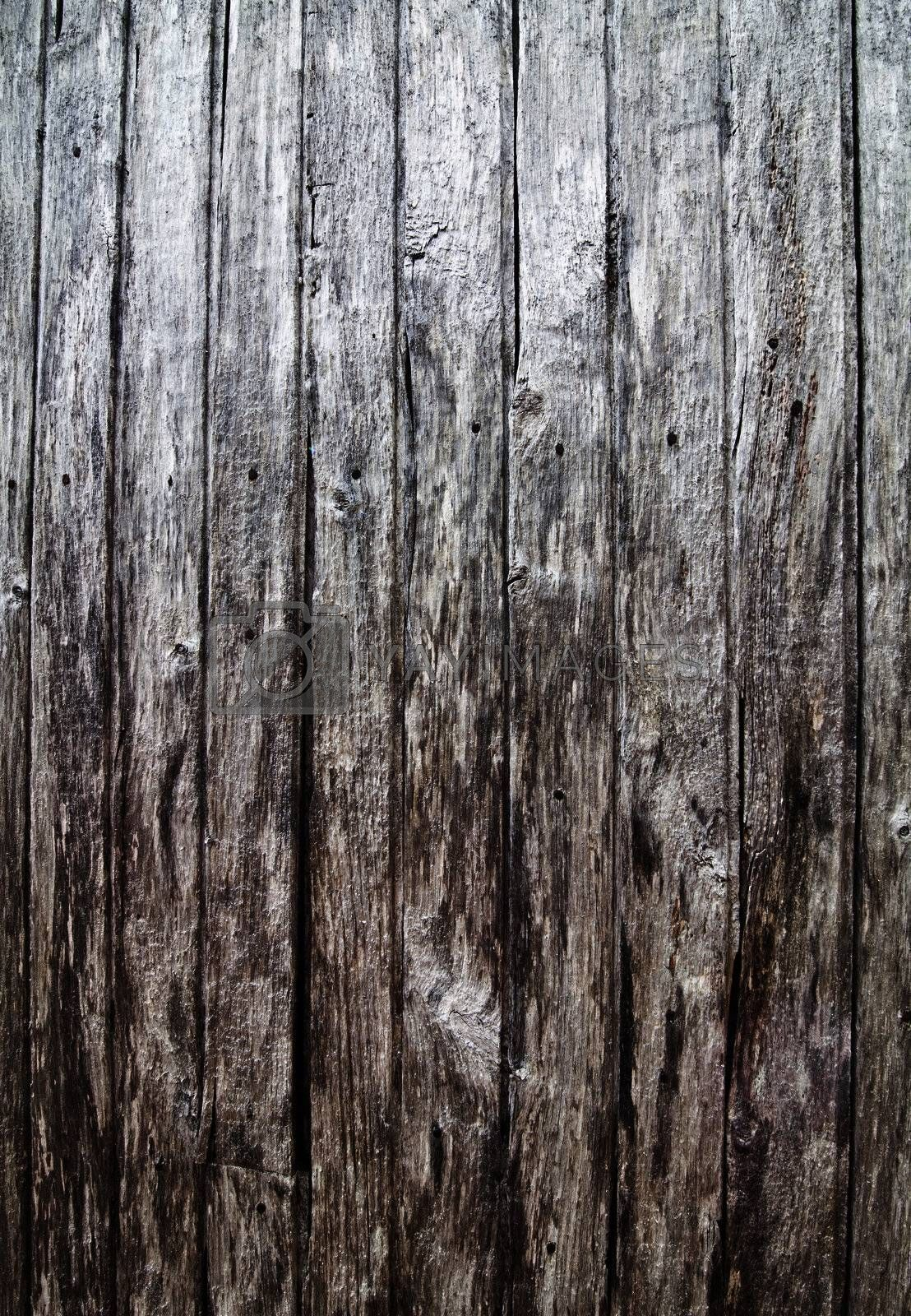 Old Barn Wood Texture Royalty Free