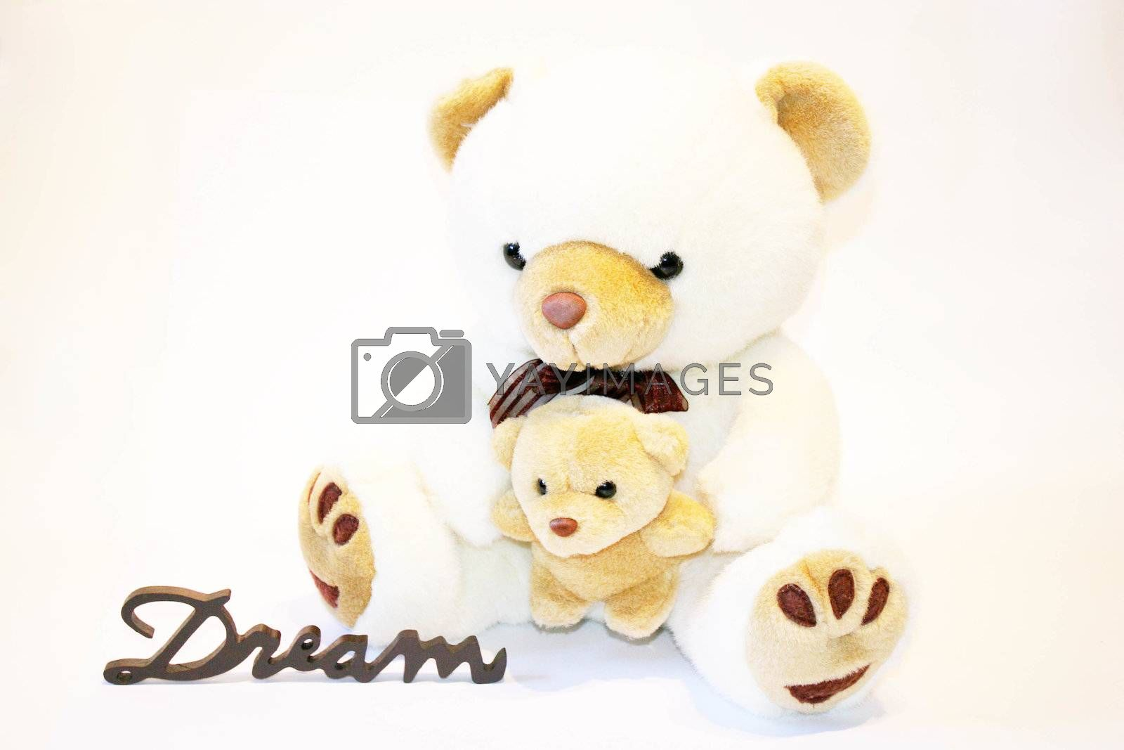Cute teddy bear sitting on a white background whit the word dream