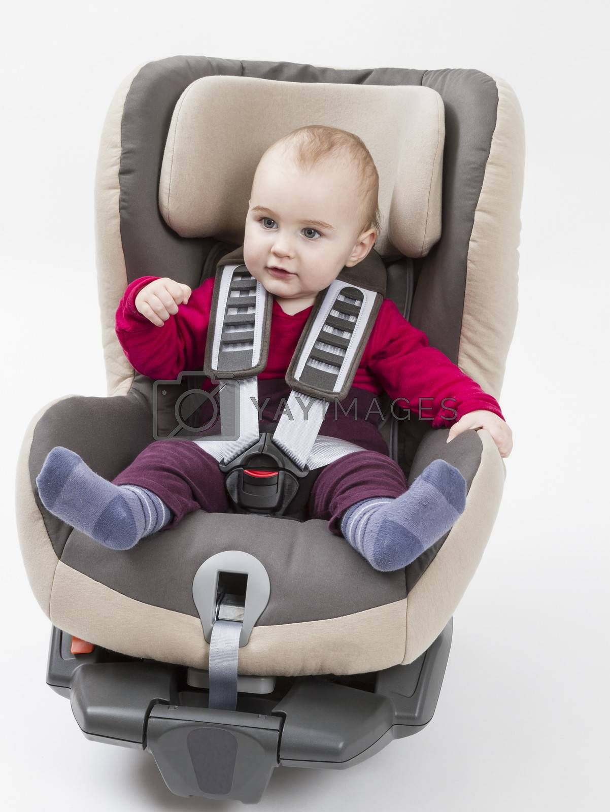 booster seat with child for a car in light background. studio shot.
