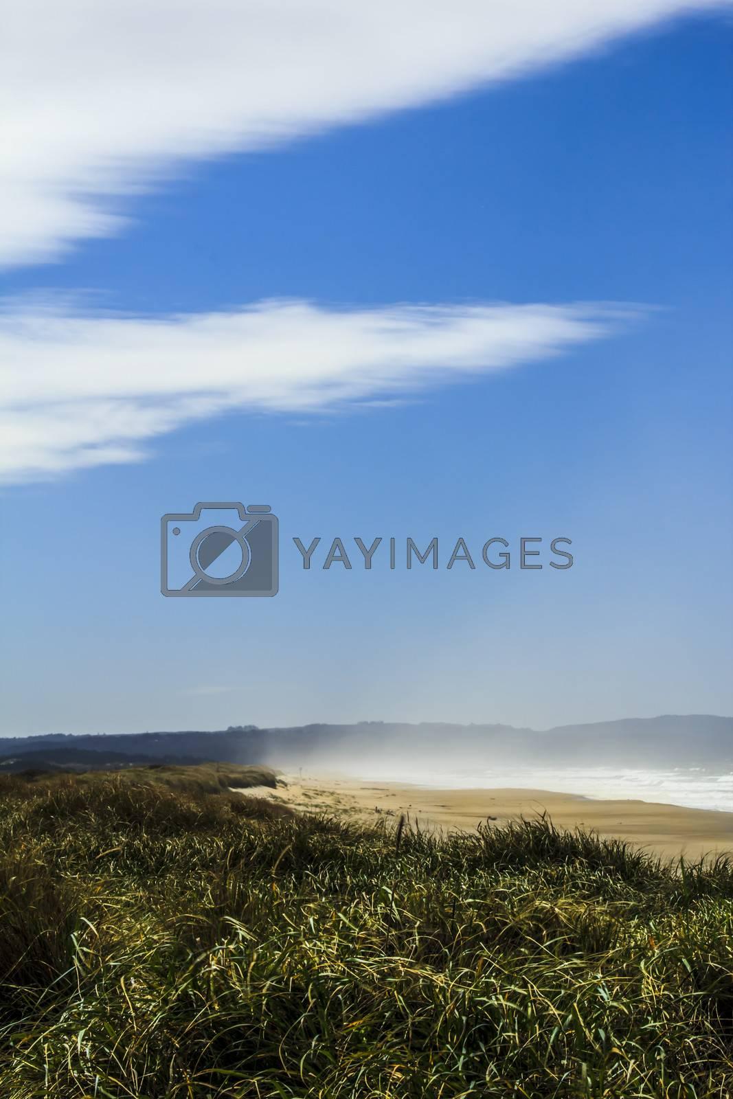 Morning mist on empty beach