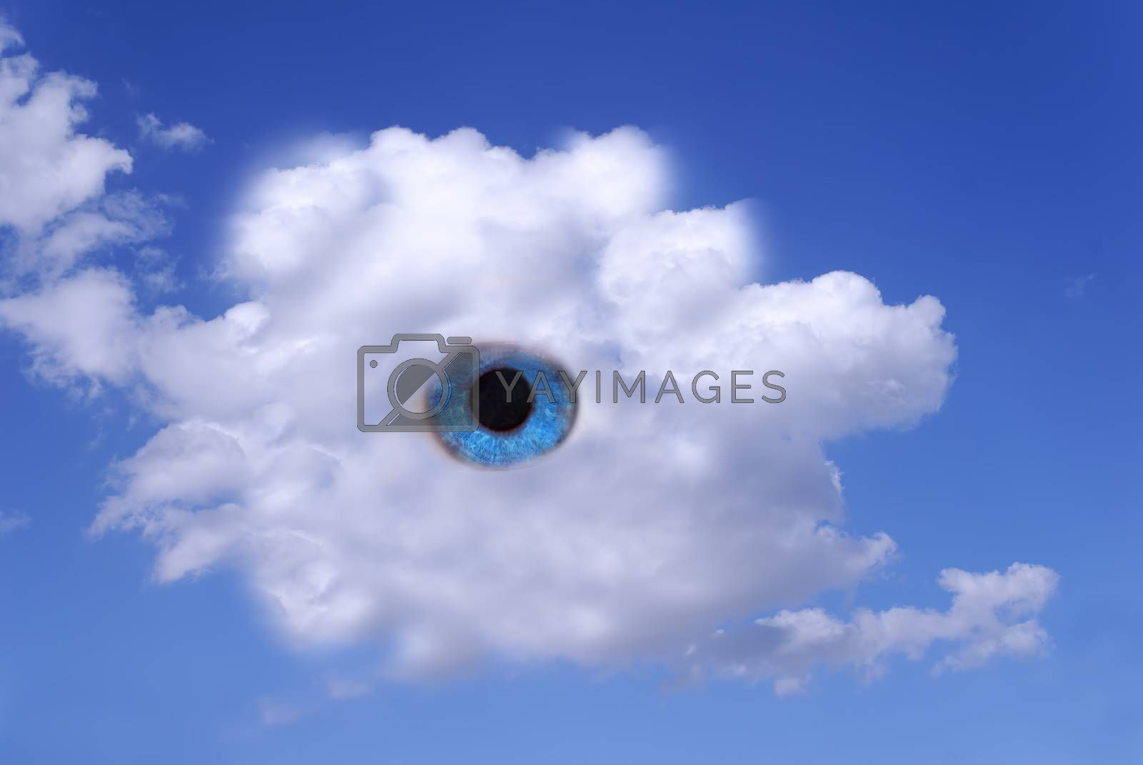 blue eyes in cloudy sky