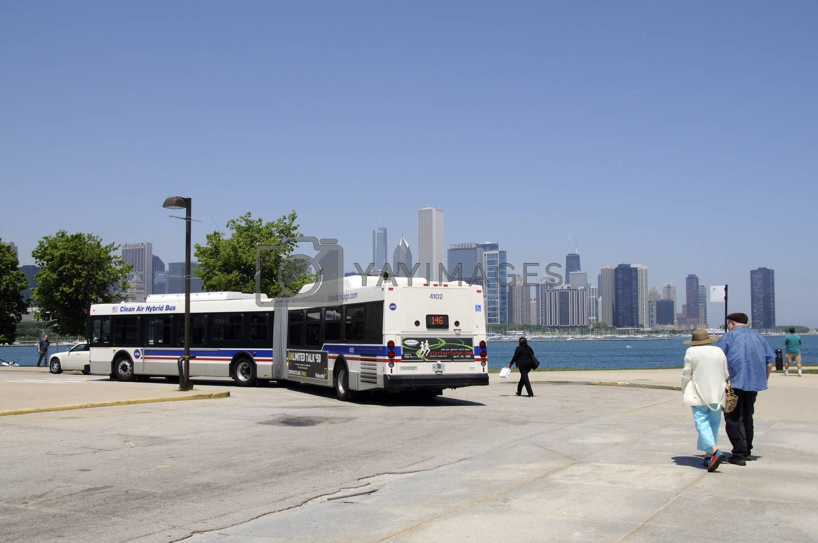 Bendy bus Chicago USA by Peter t