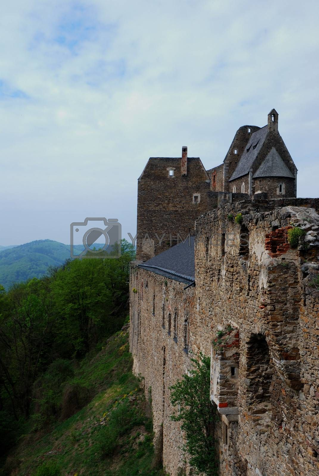 old castle with steep hillside portrait