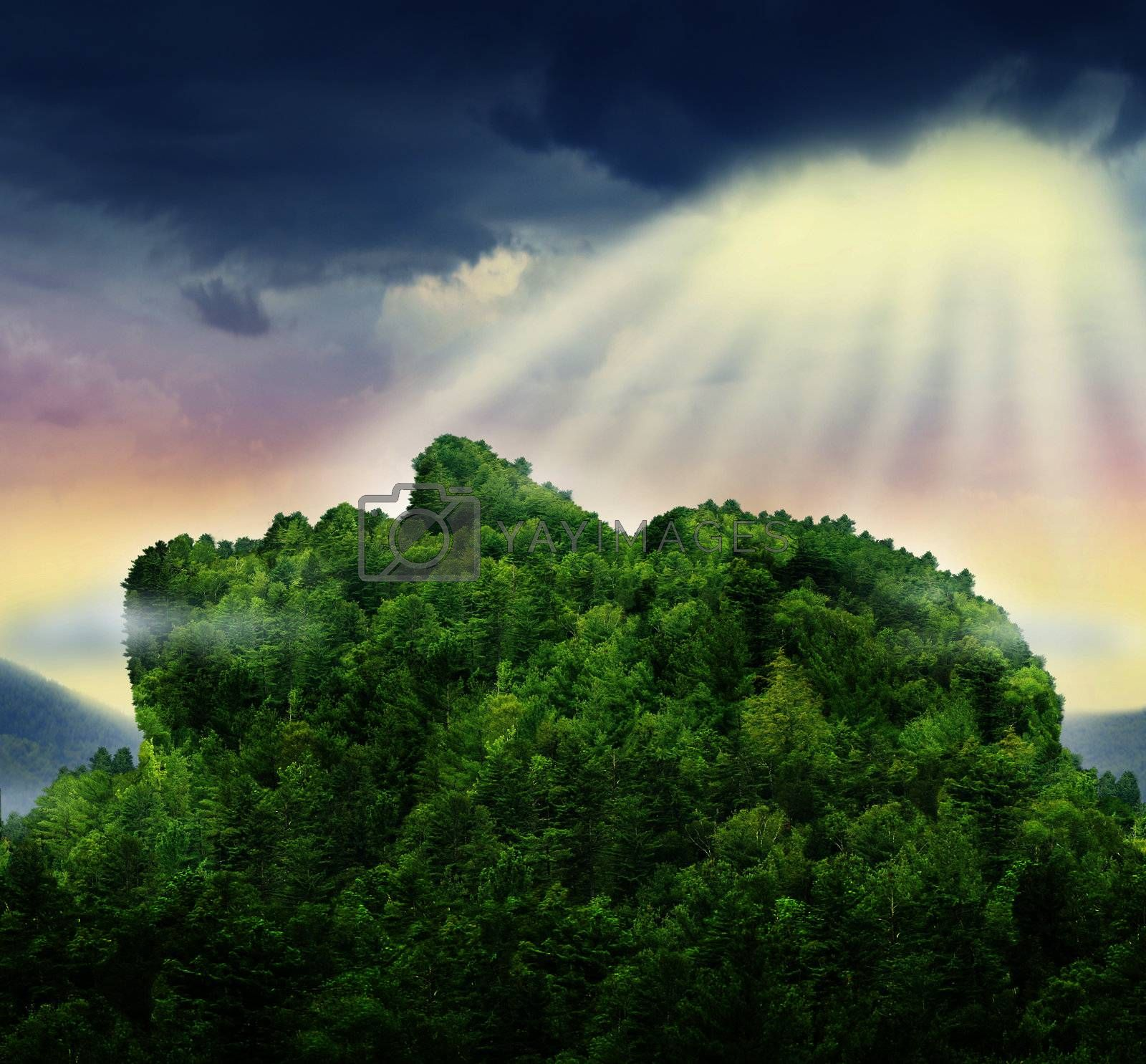 Human achievement and the power of personal success in business represented by a mountain of trees in the shape of a head and face with glowing sun light above the clouds as a symbol of hope for the future.