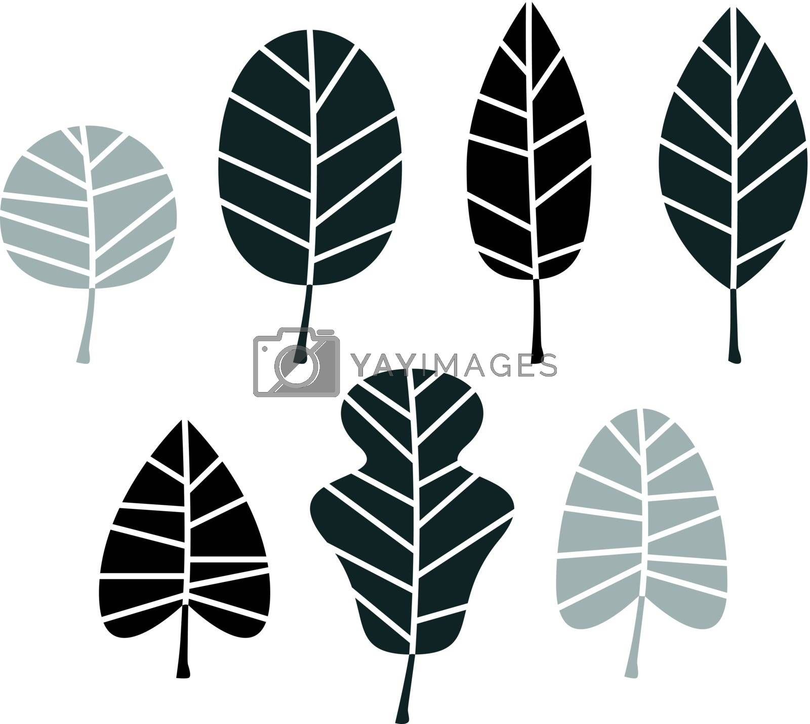 Collection of black Leaves silhouette. Vector set