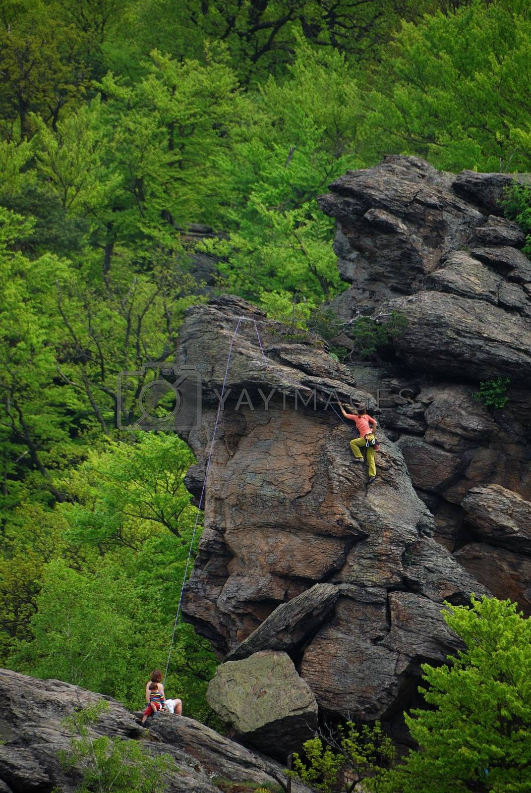 climb high rocks in forest