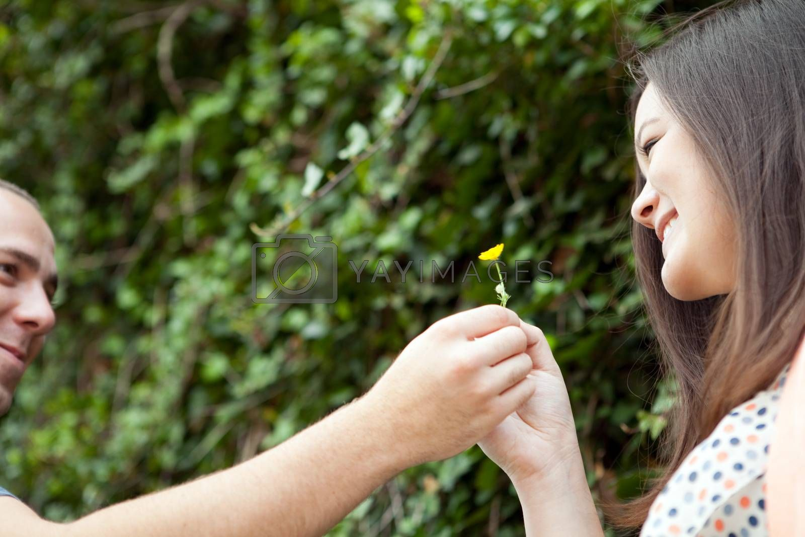 Young happy couple enjoying each others company outdoors.  The man is giving a flower to his love interest.