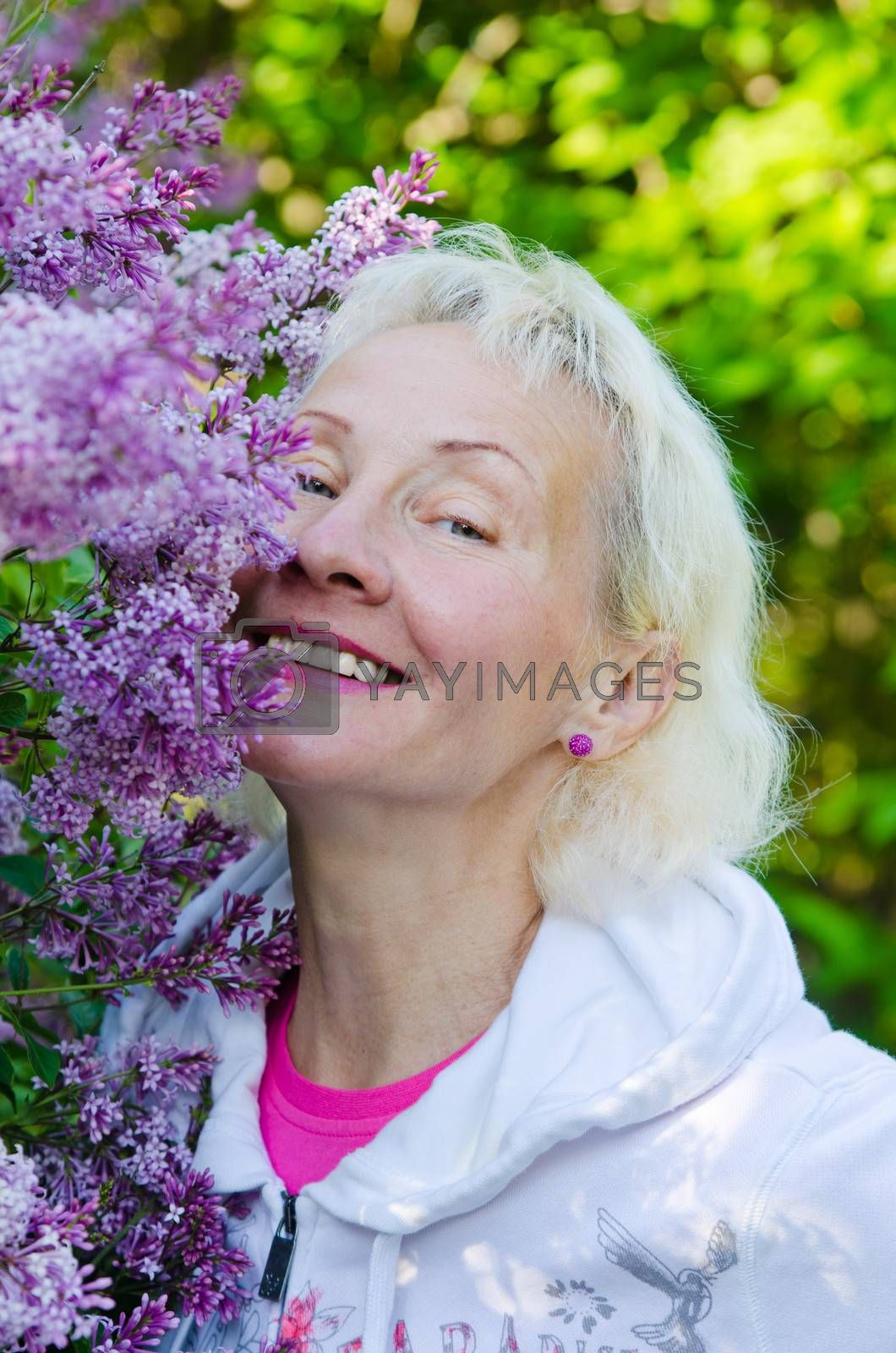 Royalty free image of Portrait of a woman from a Bush blooming lilac  by breeze09