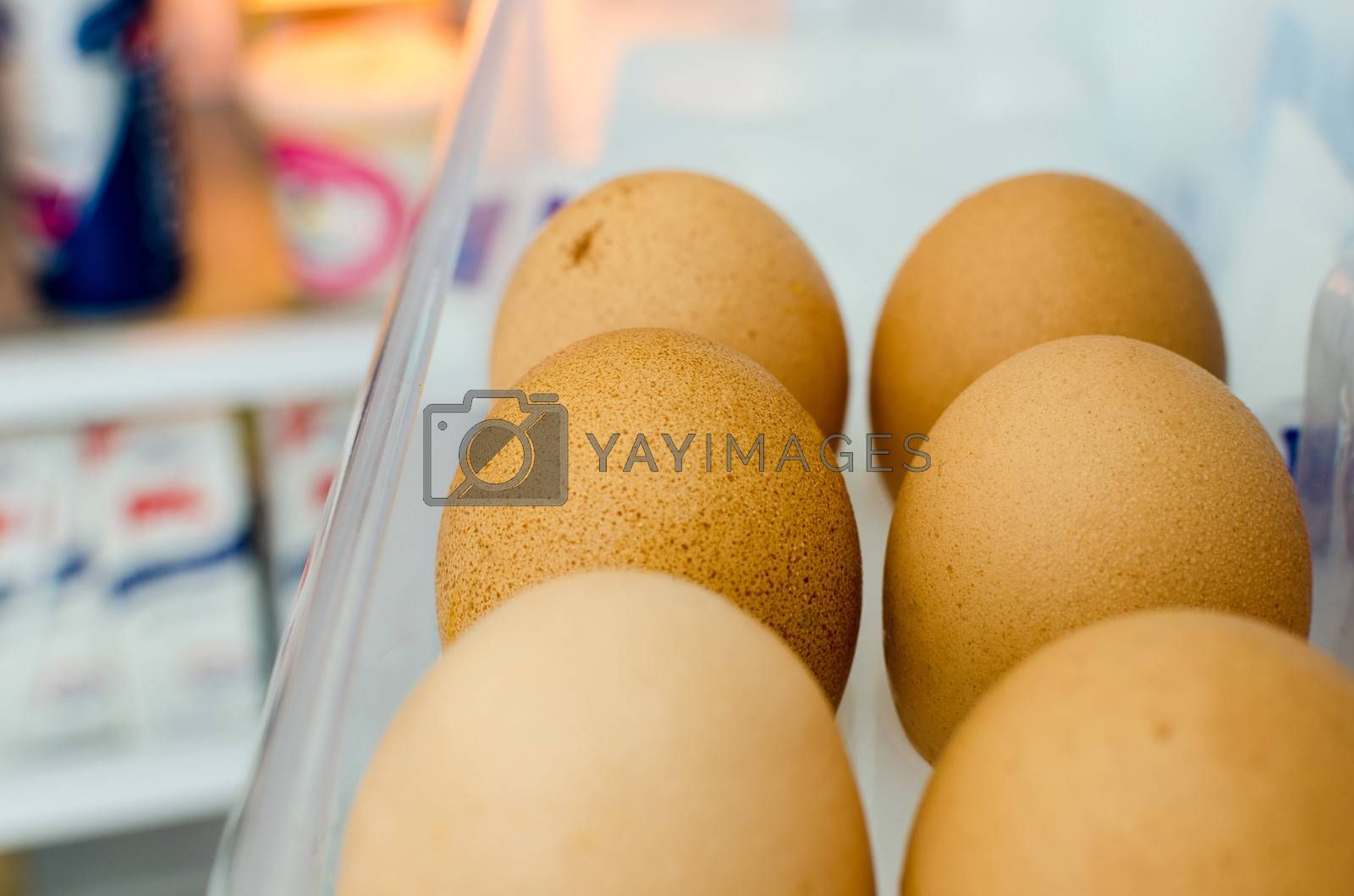 Royalty free image of Six eggs stored in the refrigerator door by finallast