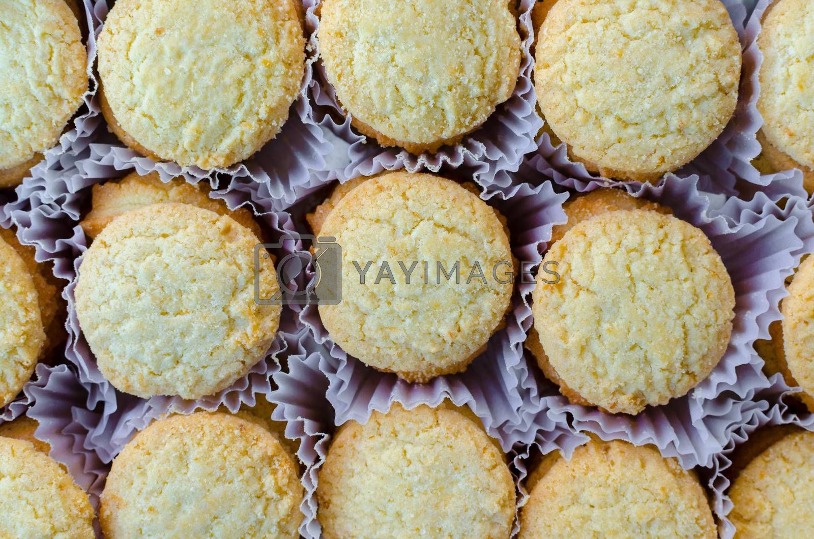 Royalty free image of Rows of Cookies in Container by finallast