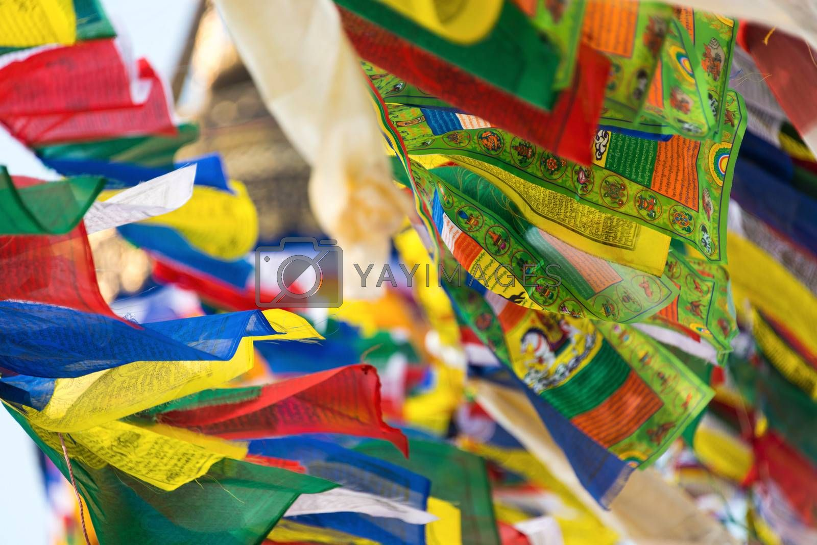Royalty free image of Prayer flags by dutourdumonde