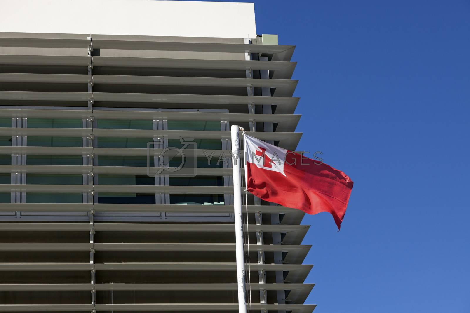 Royalty free image of Nuku'alofa building and Tongan flag by benkrut