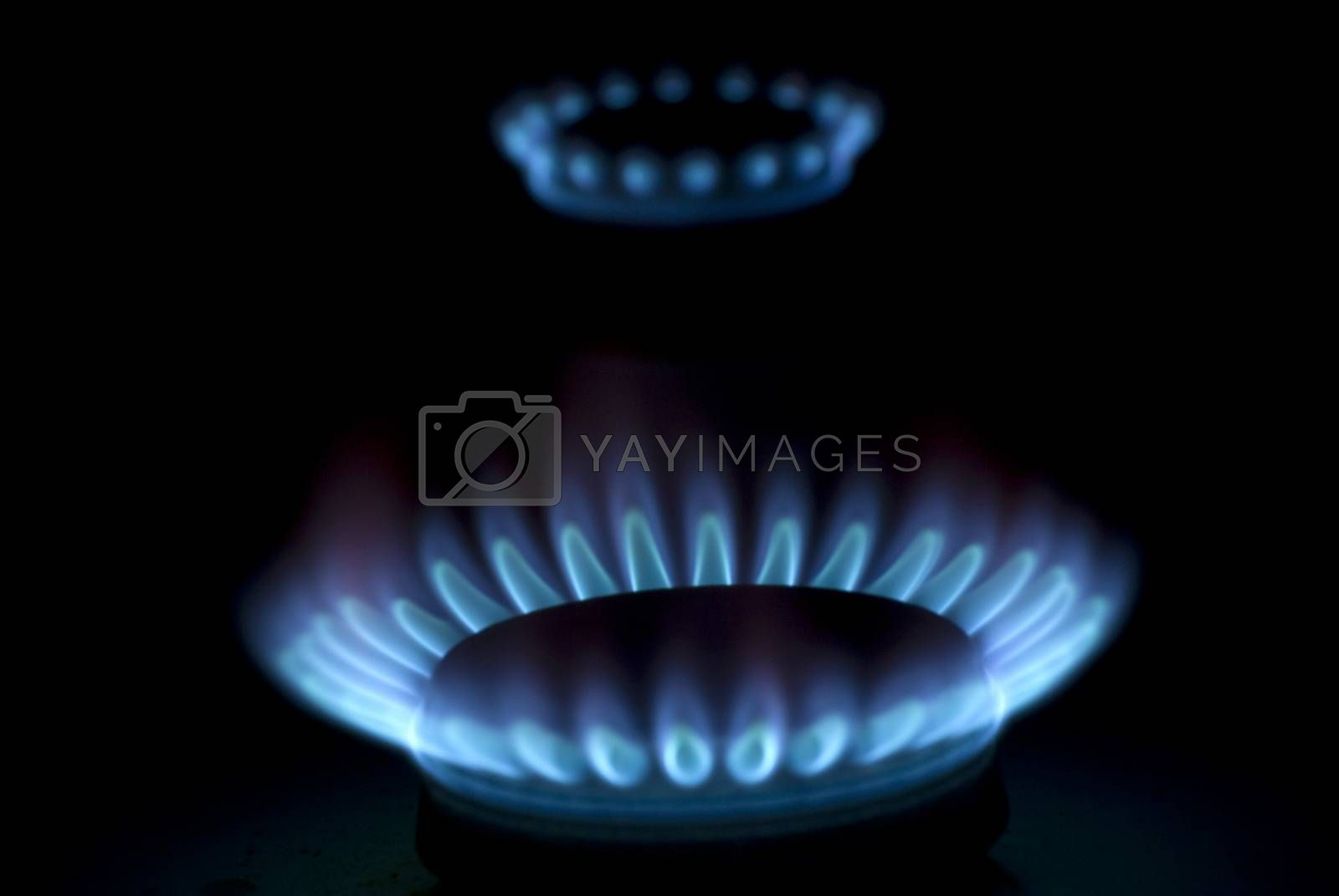 Royalty free image of flames of gas by Pakhnyushchyy
