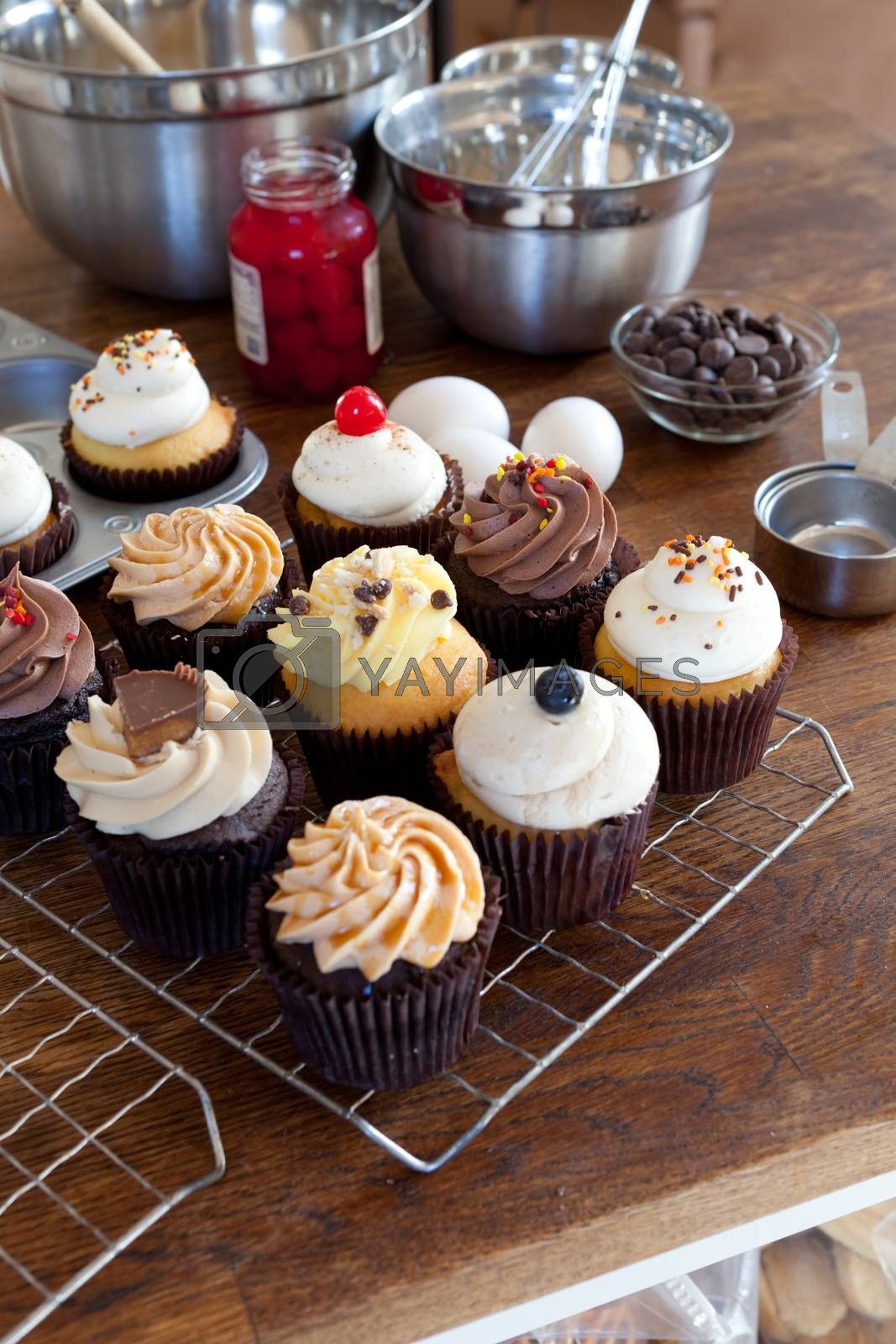 Royalty free image of Assorted Gourmet Cupcakes by graficallyminded