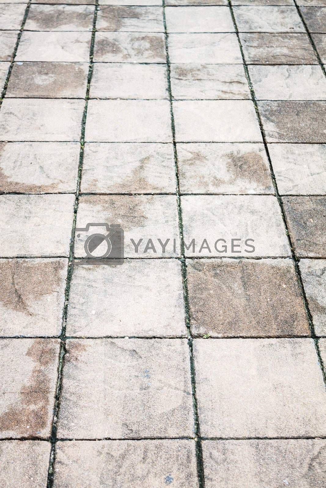 Wet walk way texture with stone plates