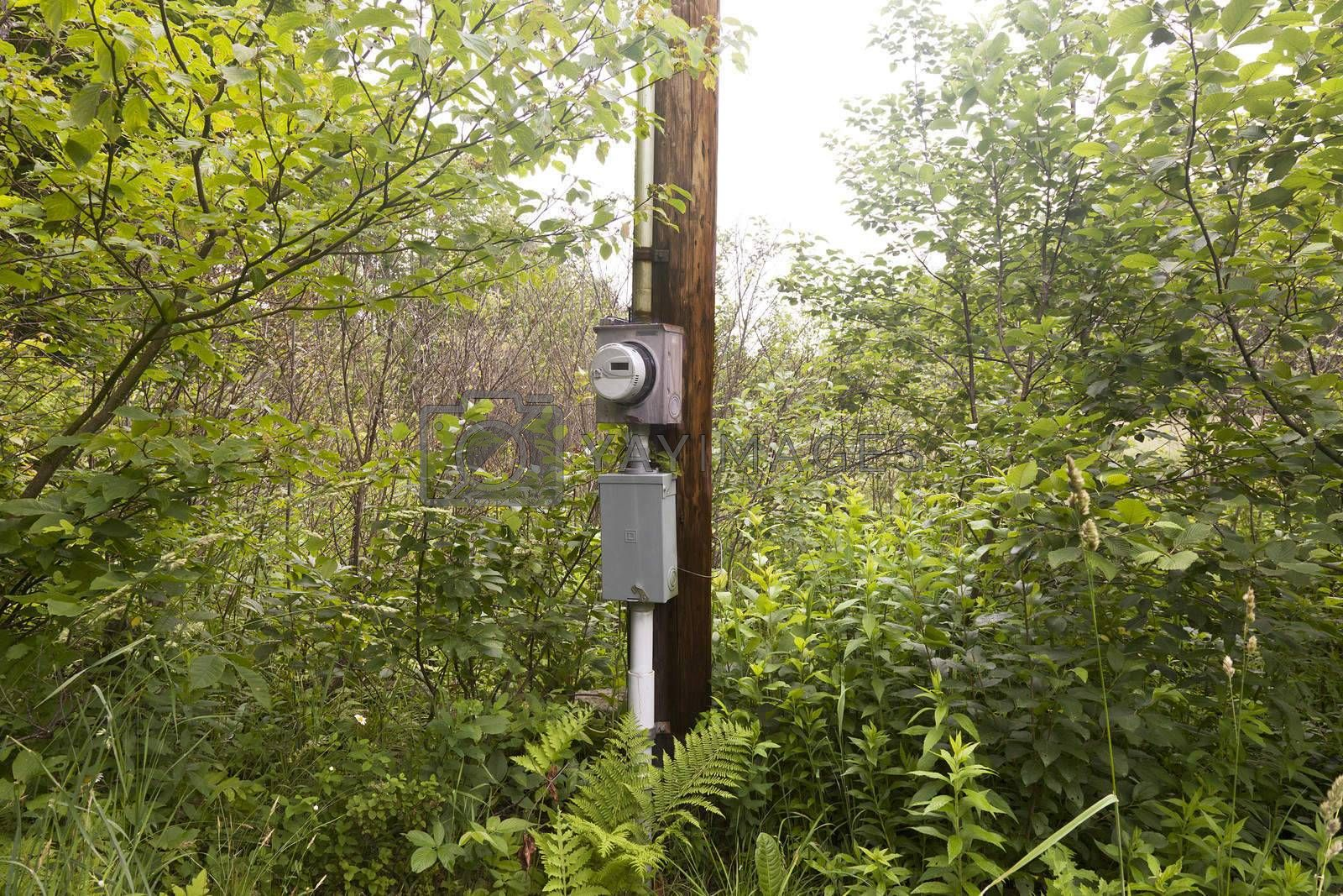 Royalty free image of Rural Electric Box by mothy20