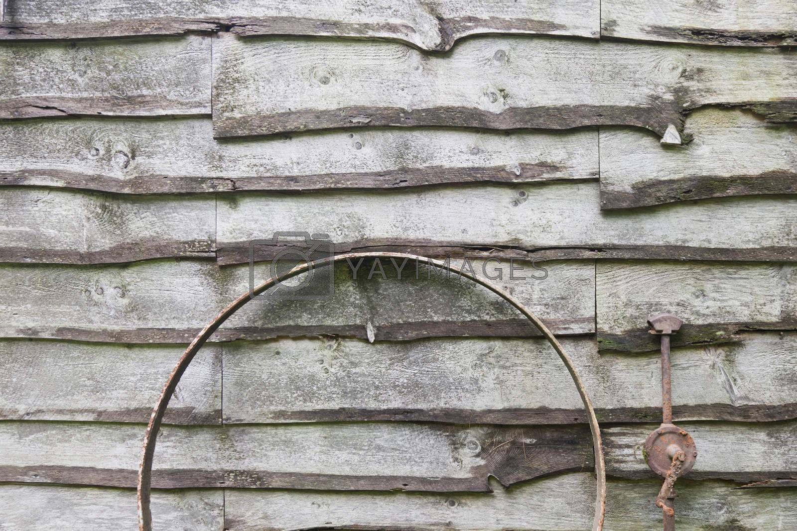 Royalty free image of Rural Wood Shed by mothy20