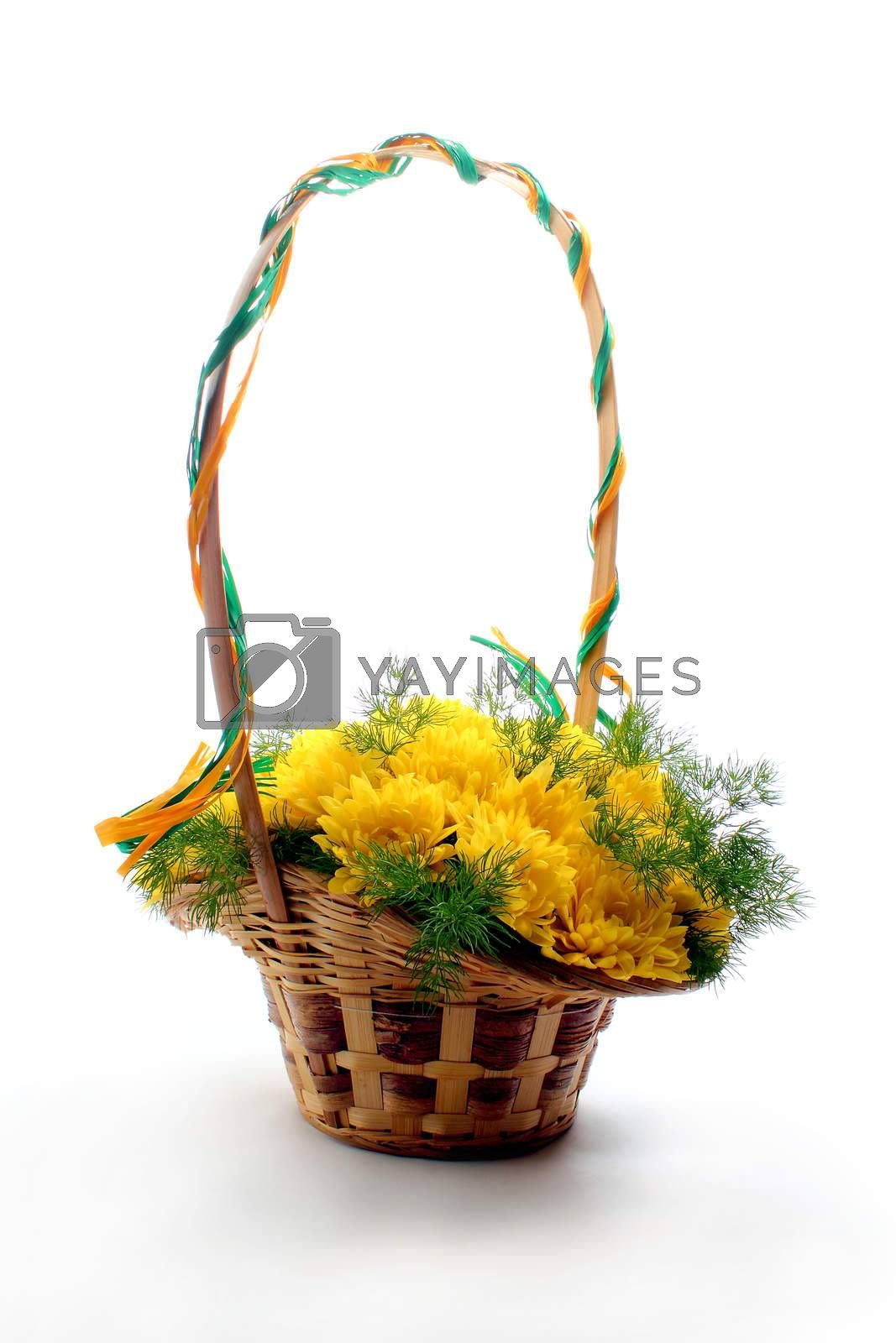 Basket of yellow flowers on white