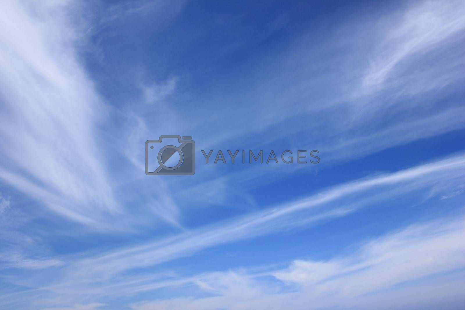 Blue sky and light white summer clouds