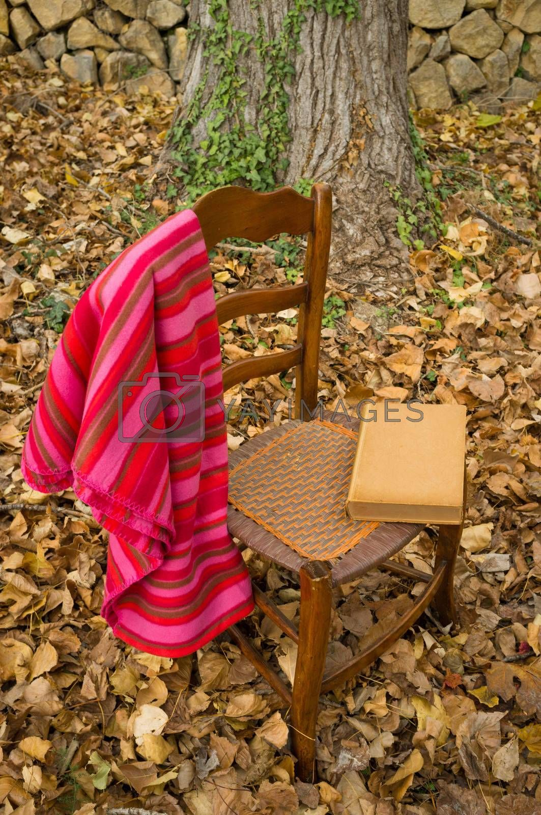 Cozy chair with blanket against an autumn background