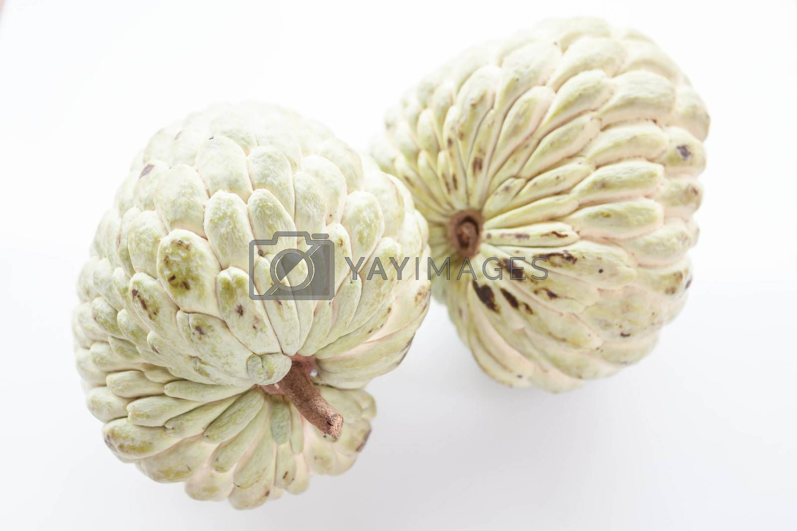 Sweet fruit of custard apple isolated on white background