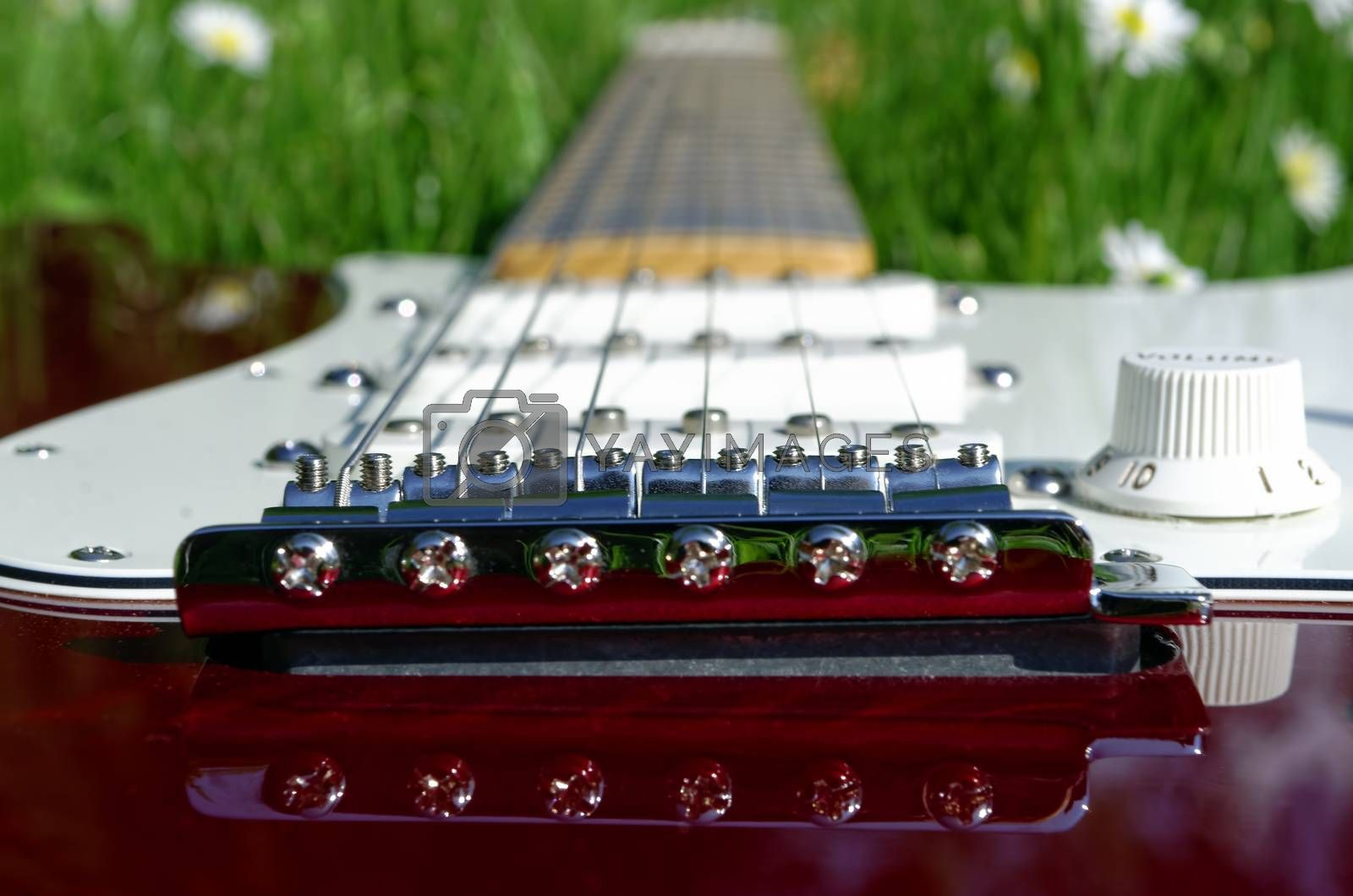 electric guitar lying in grass