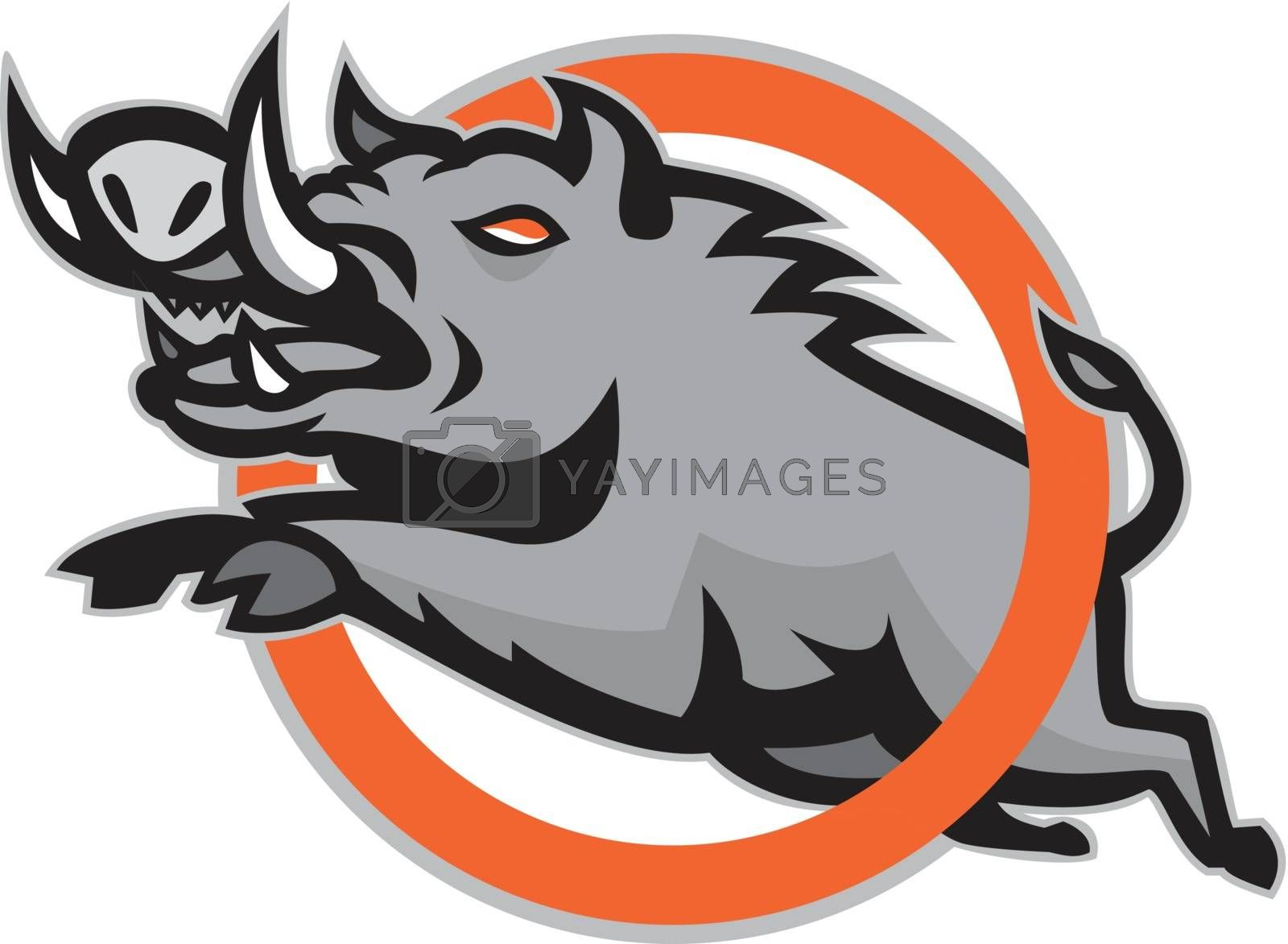 Illustration of a wild pig boar razorback jumping through a ring or circle on isolated background done in retro style.