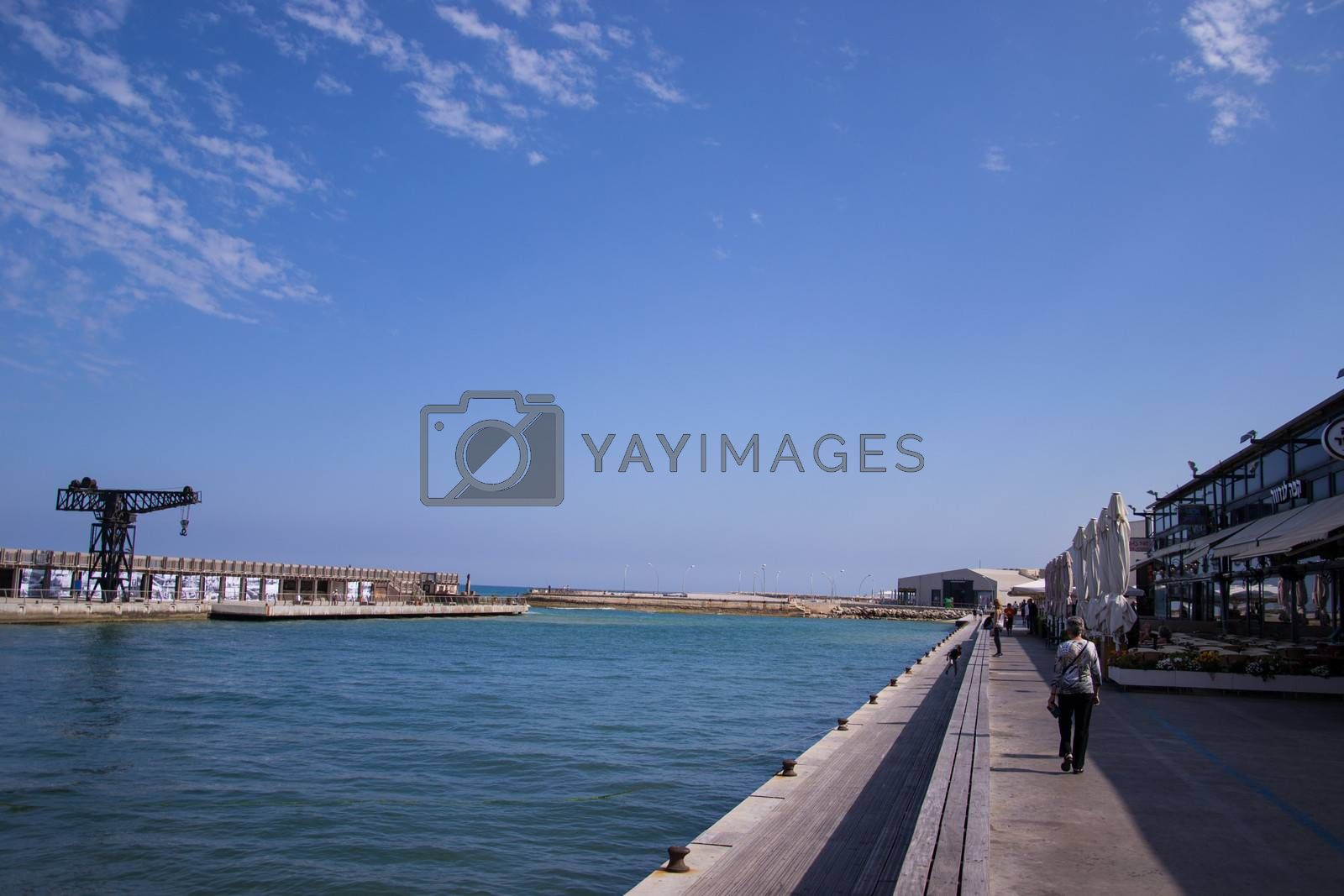 Crane in sea  port