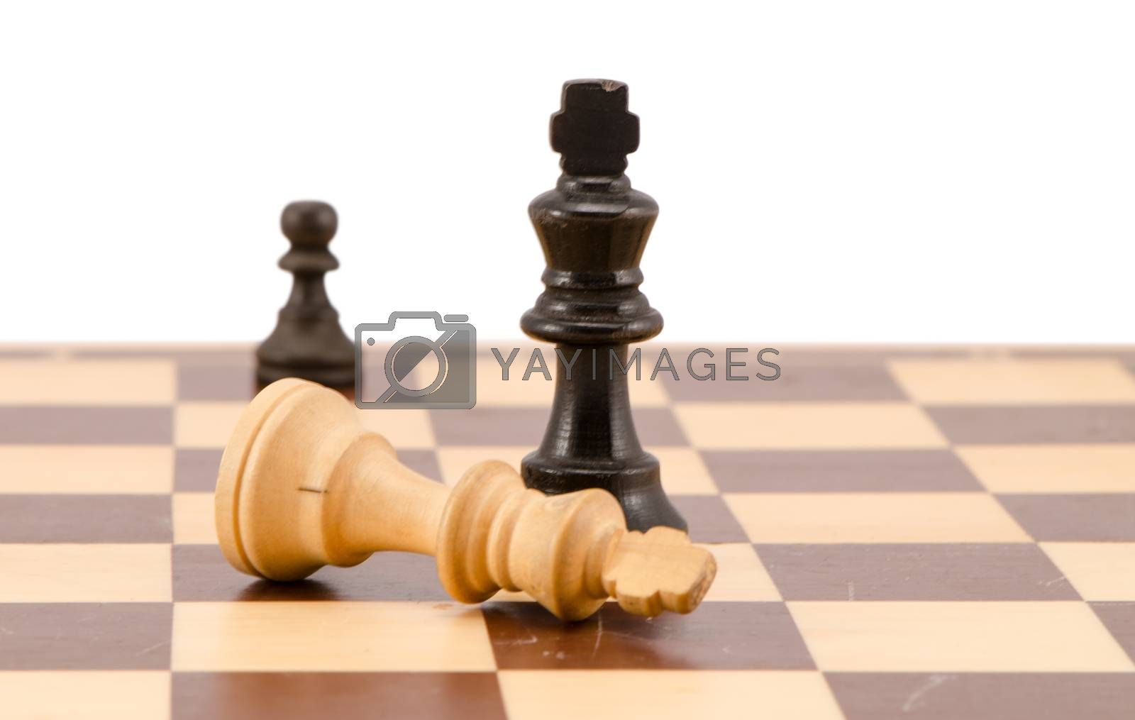 white chess king lie near winner black on chess board isolated on white.