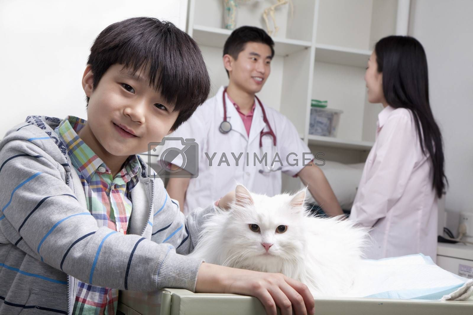 Boy with pet dog in veterinarian's office by XiXinXing
