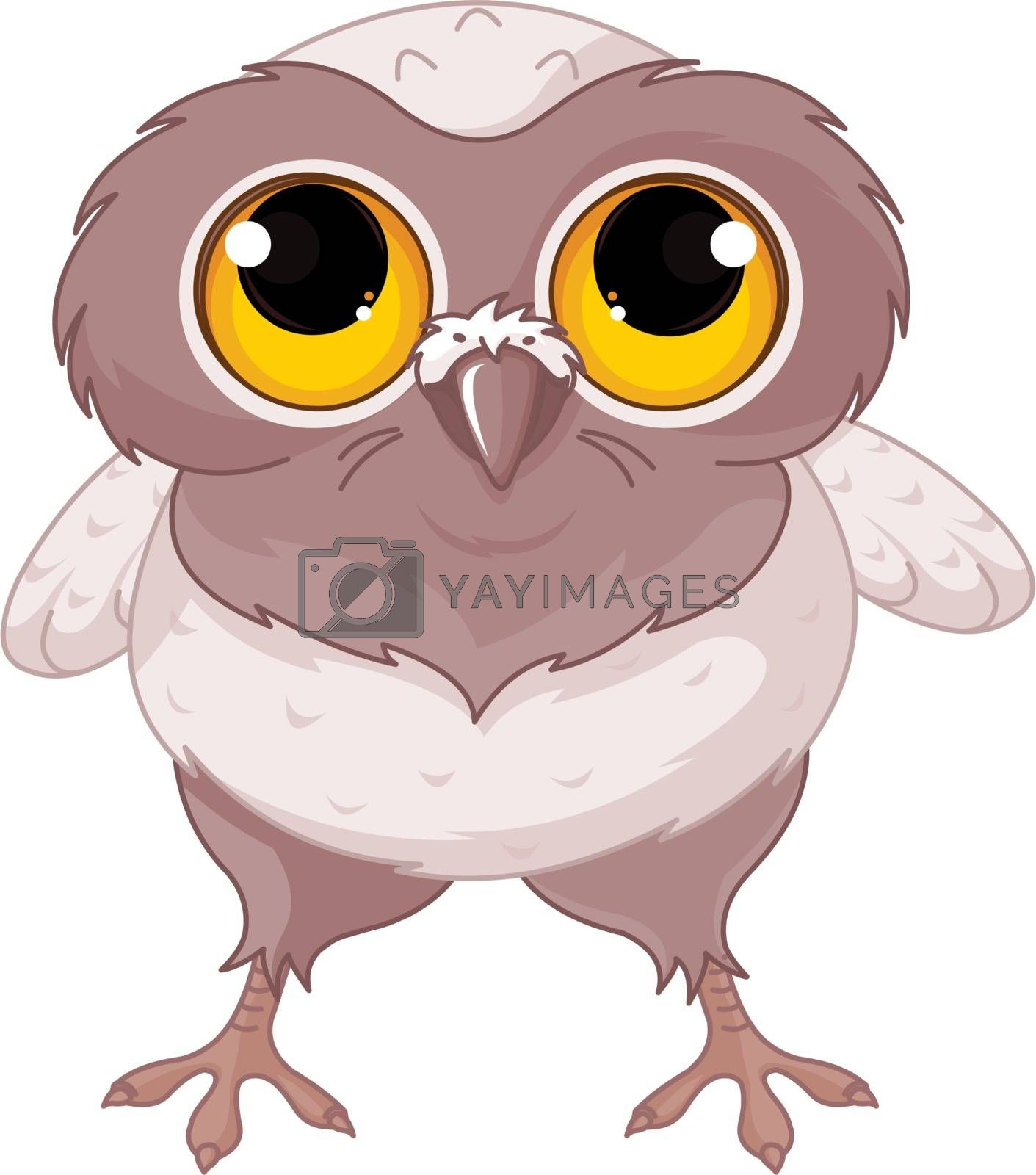 Illustration of a cartoon baby owl.