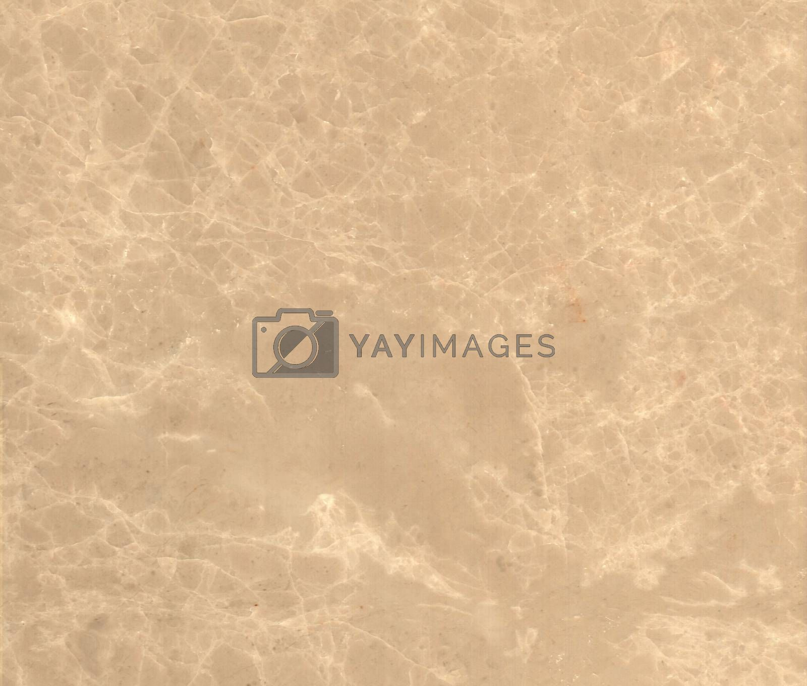 Brown marble texture background (High resolution scan) by mg1408