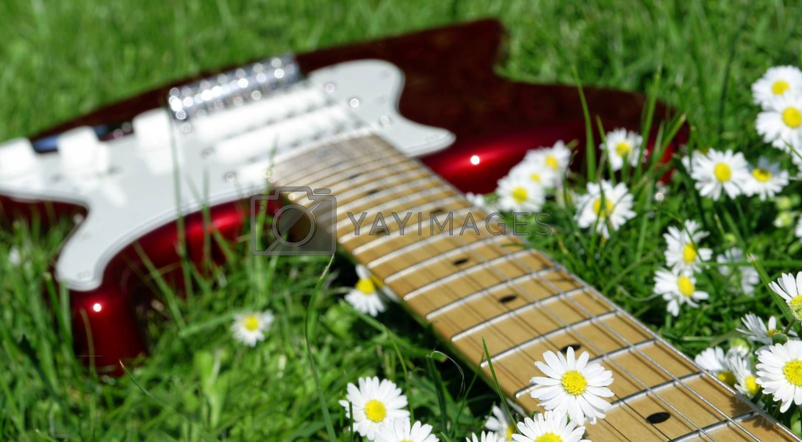 electric guitar lying in the grass