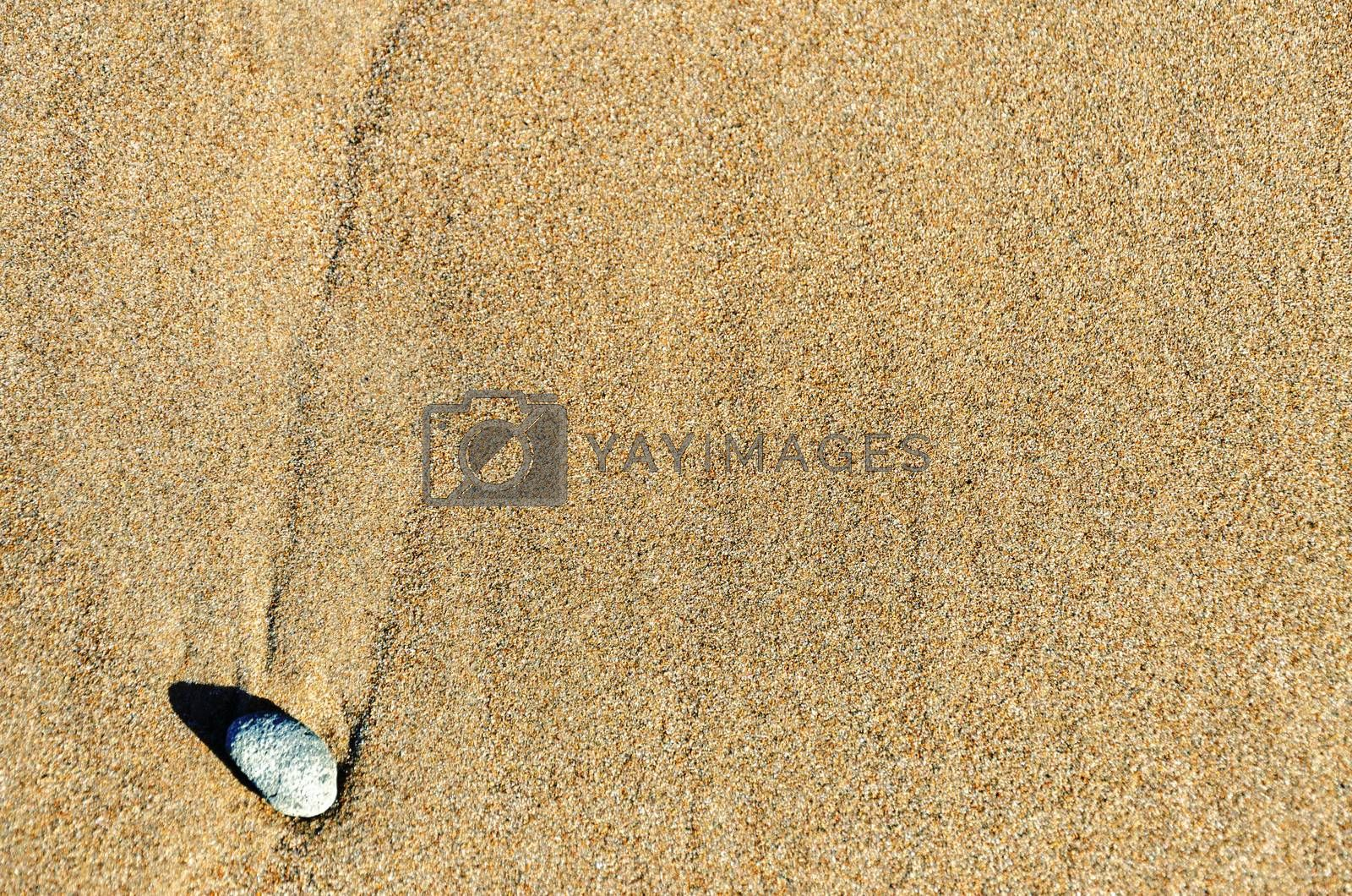 A single rock in rough textured brown sand