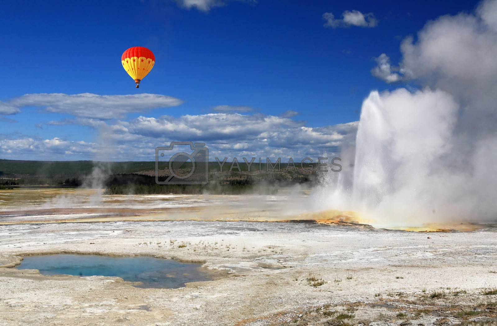 The scenery of Lower Geyser Basin in Yellowstone National Park