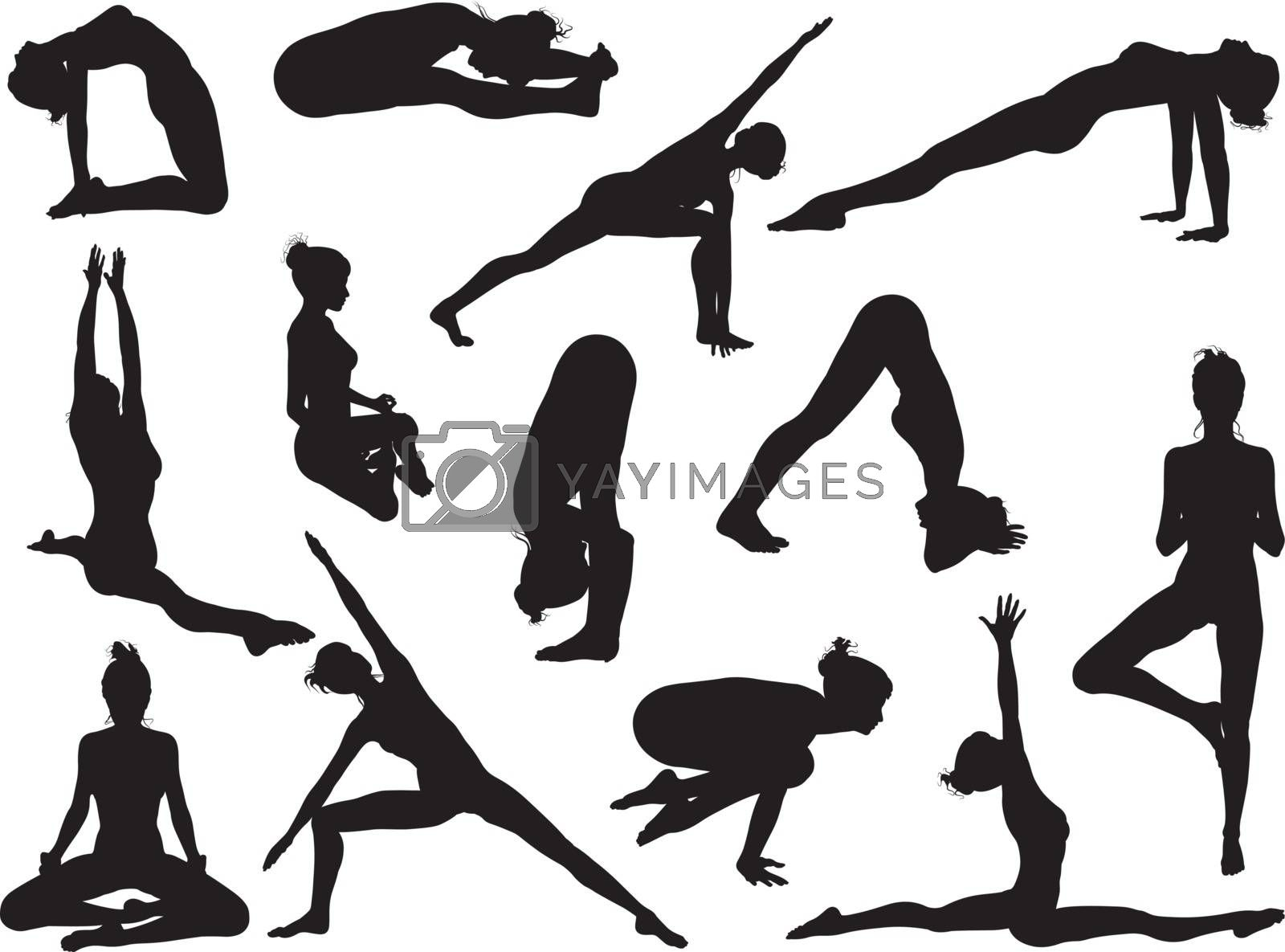 Very detailed detailed high quality yoga woman silhouettes