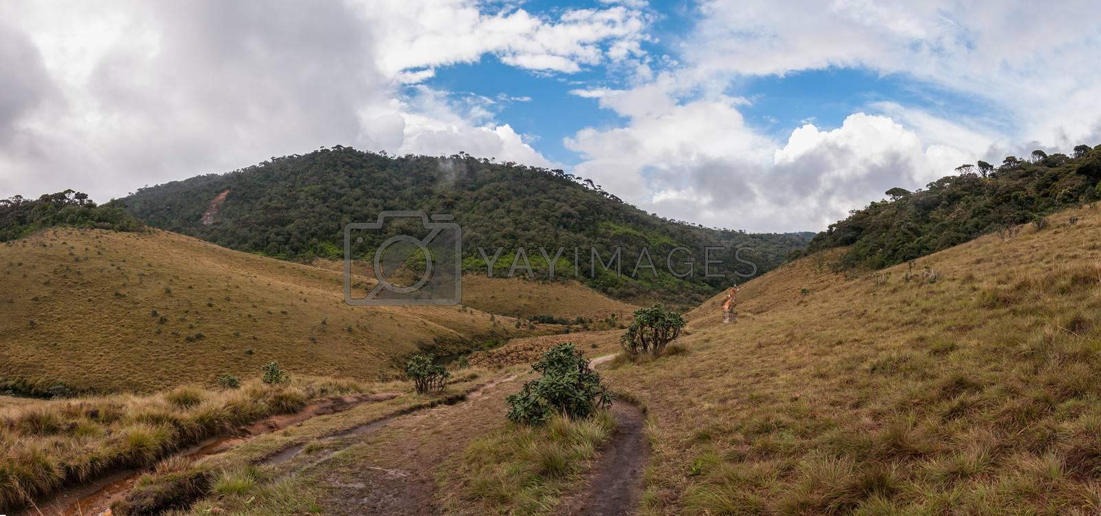 Panorama of Horton Plains in Sri Lanka.