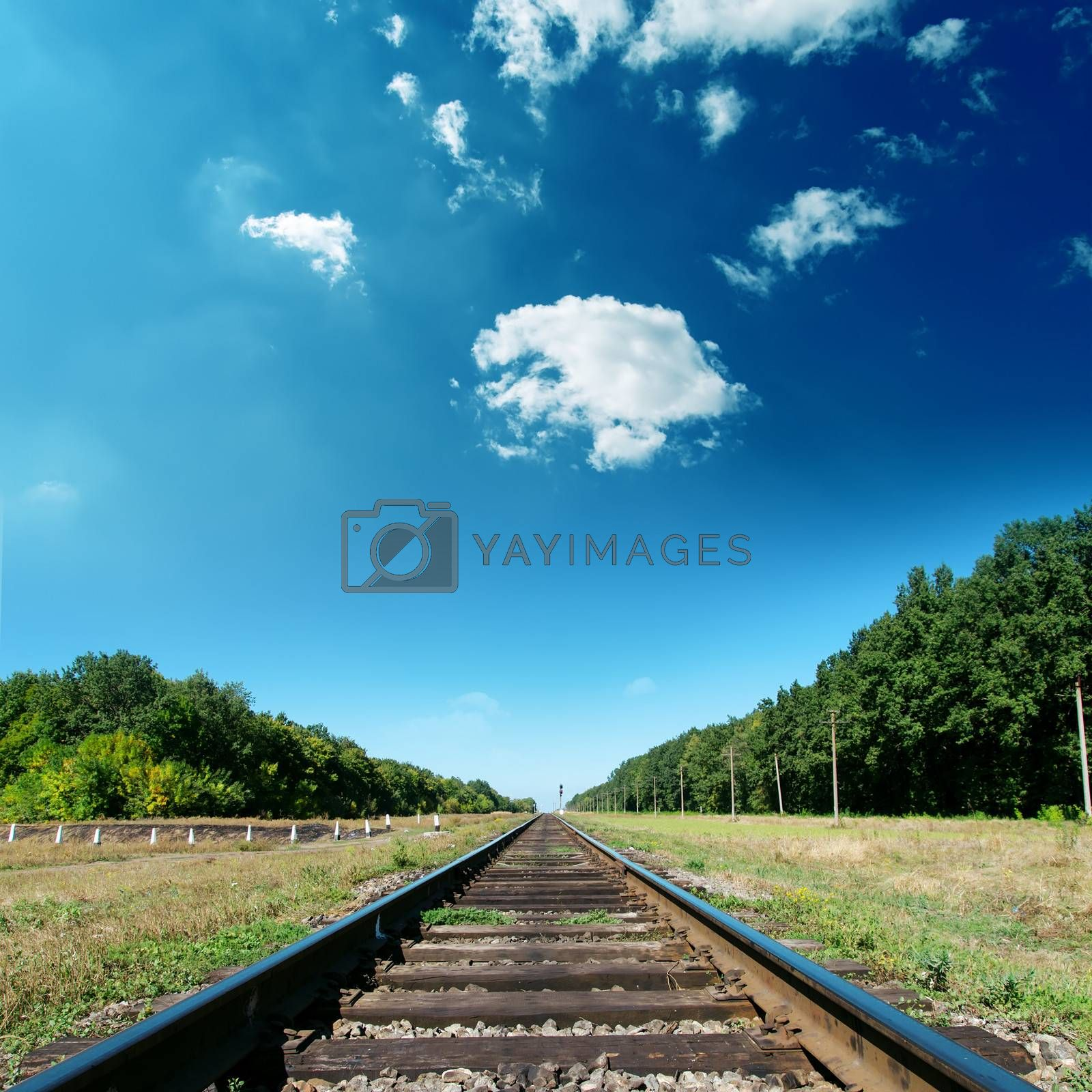 railroad to green horizon