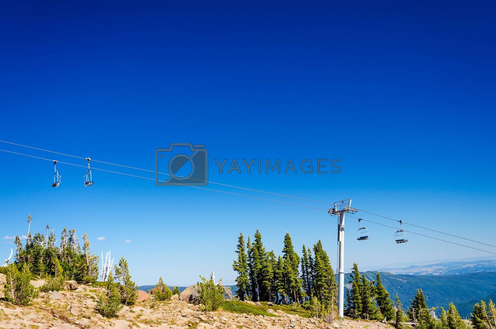 Chairlift going over trees in the summer on Mount Hood