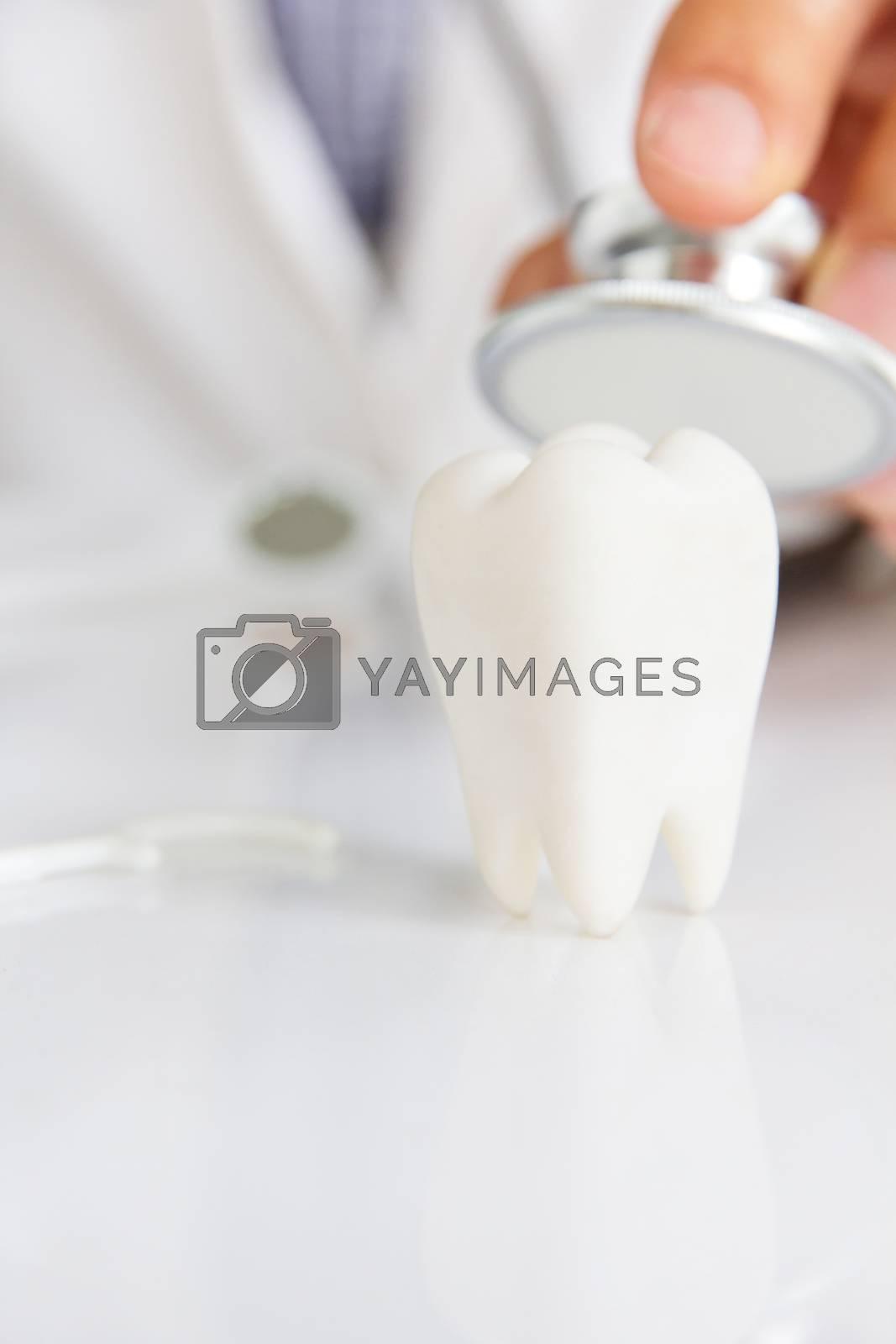 molar with dentist background ,dental concept