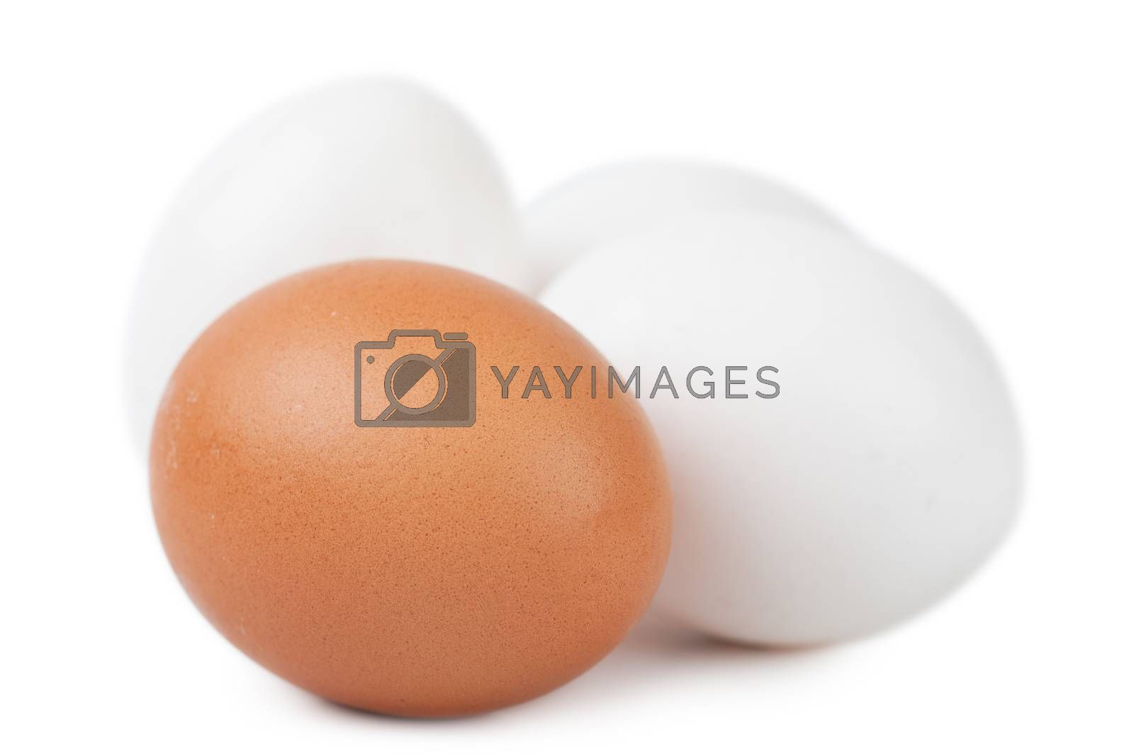 Macro view of brown and white eggs isolated on the white