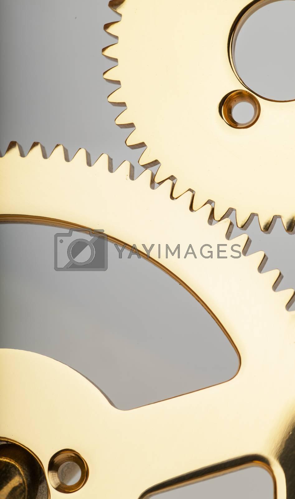 Macro view of two golden gears