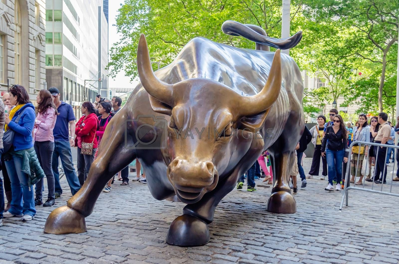 NEW YORK - MAY 27: The landmark Charging Bull in Downtown Manhattan, May 27, 2013. The sculpture is a popular tourist destination and represents aggressive financial optimism and prosperity