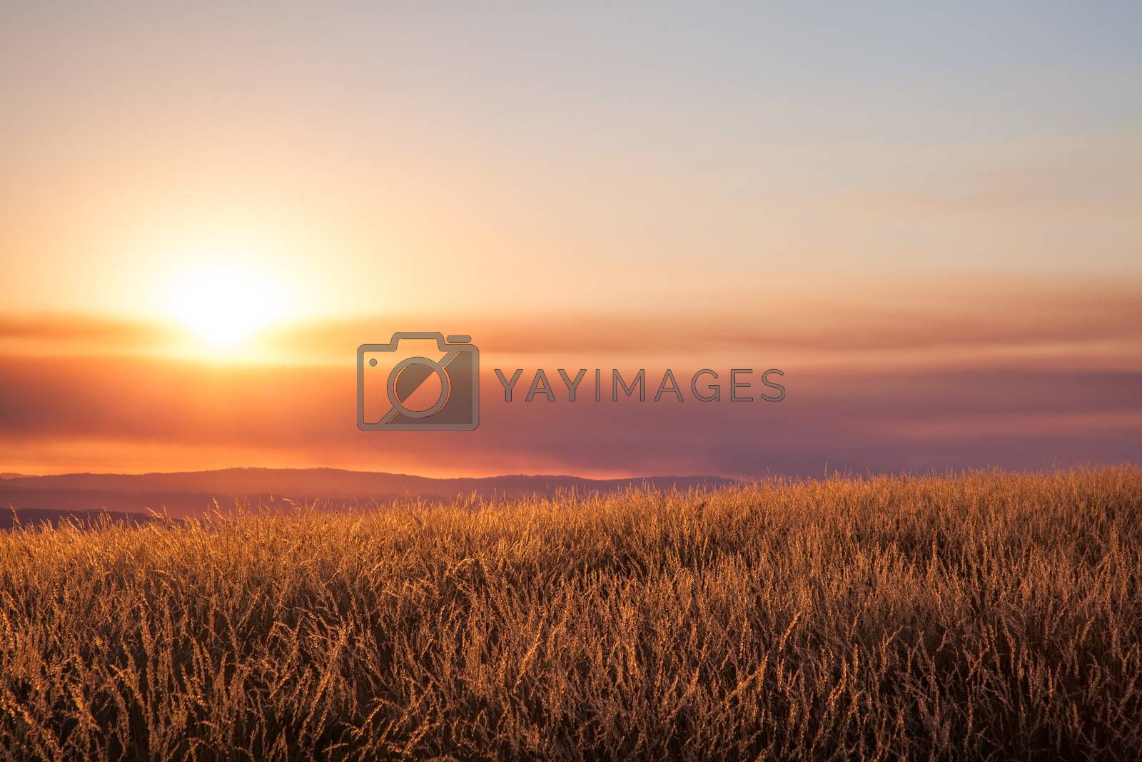 Beautiful sunset over mountain field. Portugal