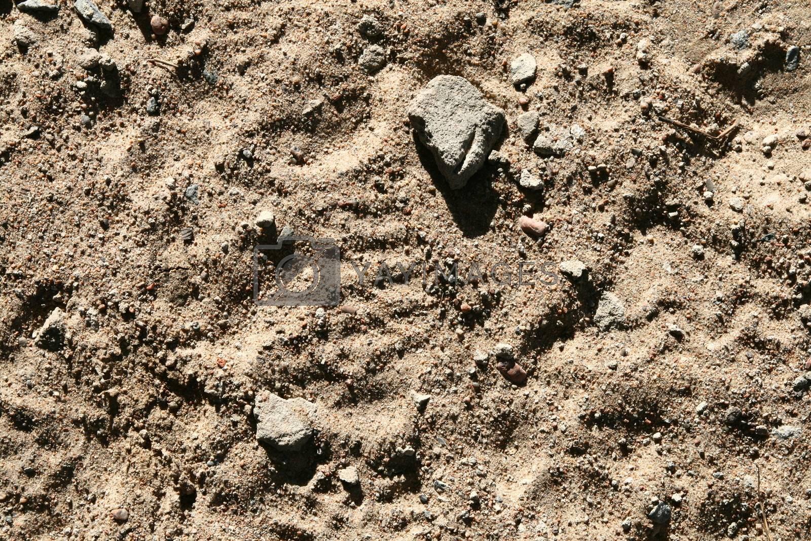 sand background grains nature texture