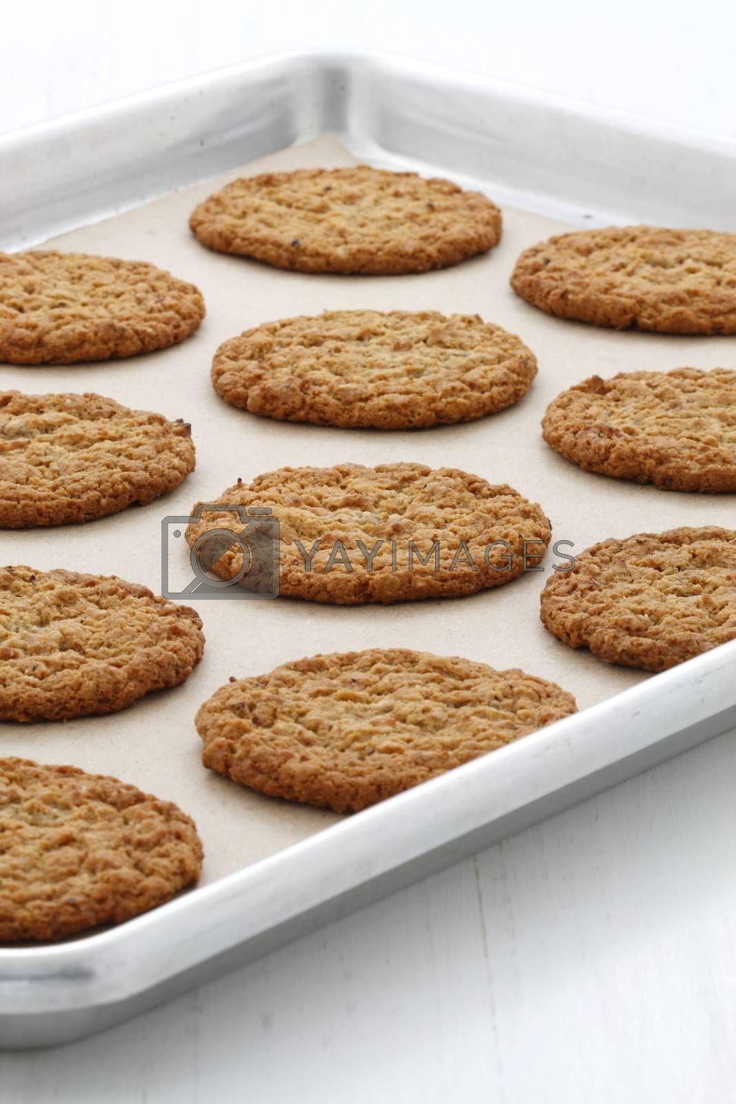 Fresh baked oatmeal cookies by tacar